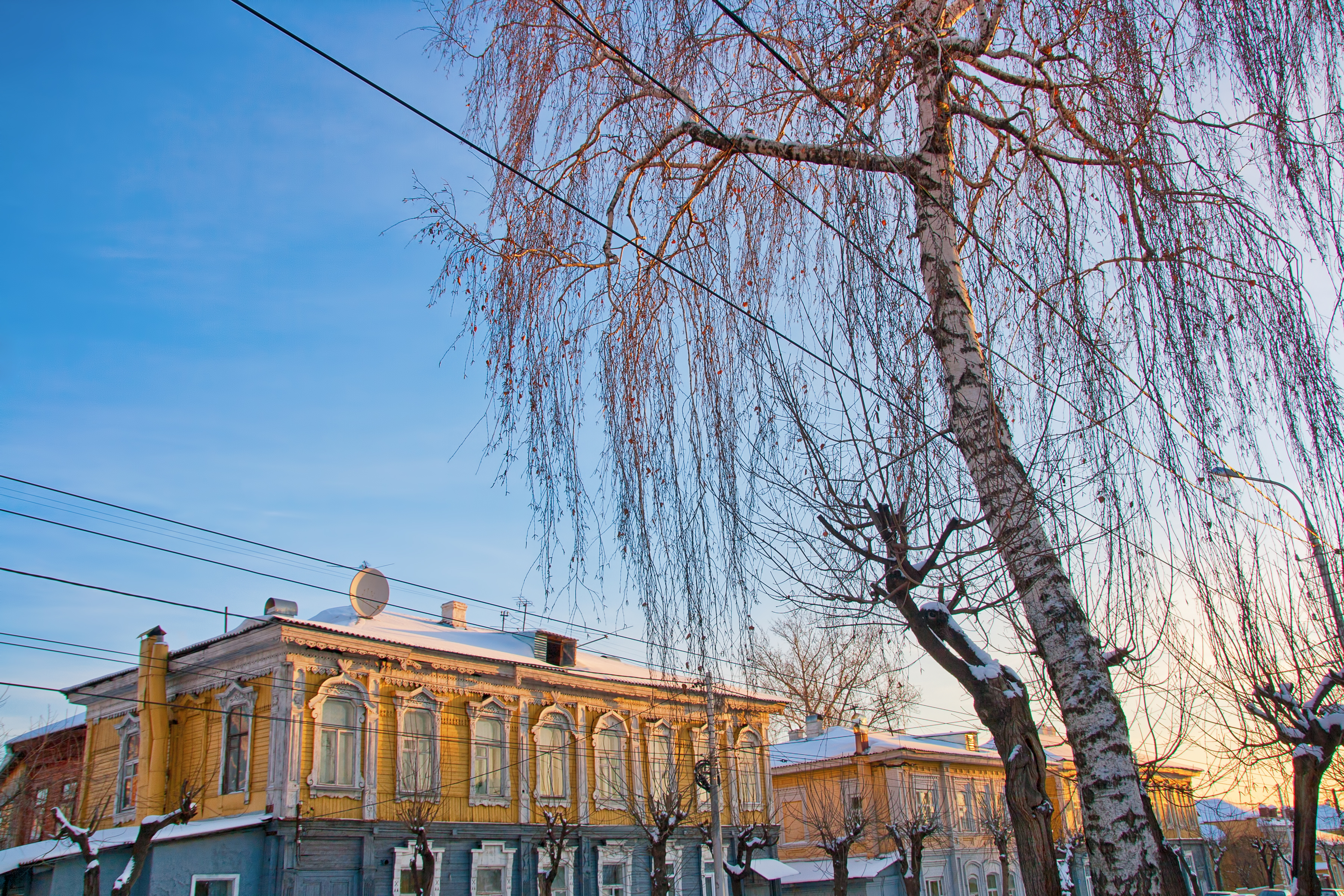Birch on the street, Aged, Residence, Vintage, Ufa, HQ Photo