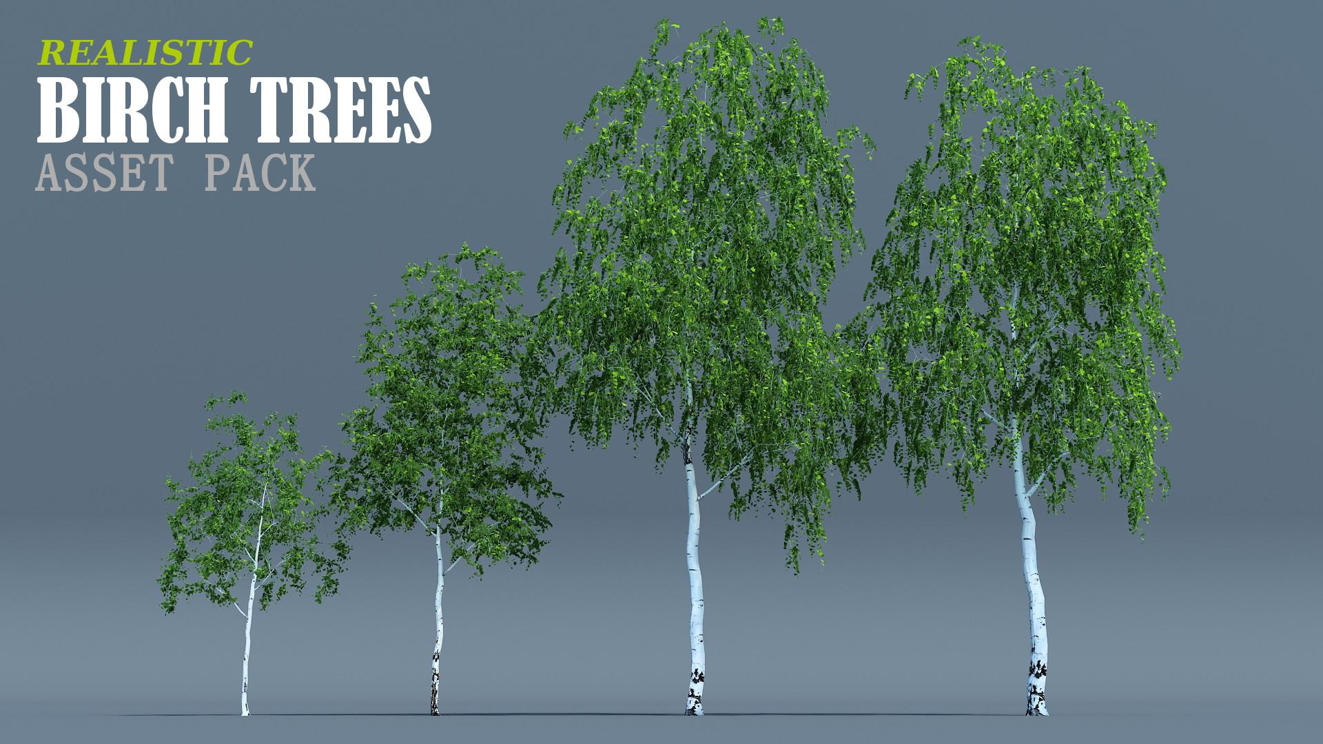 Birch trees pack - Blender MarketBirch trees pack - Blender Market