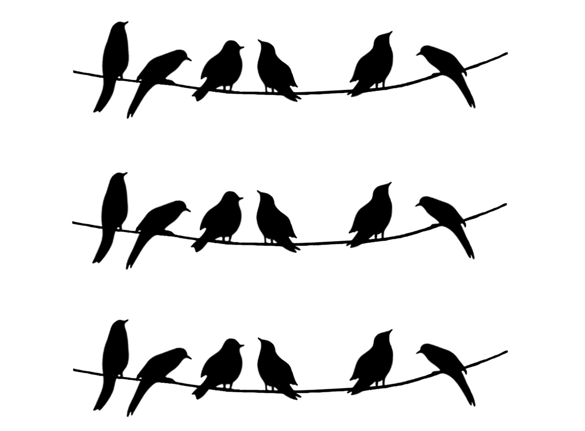 Barrette Birds on Wire Medium 3 pcs 3-1/4