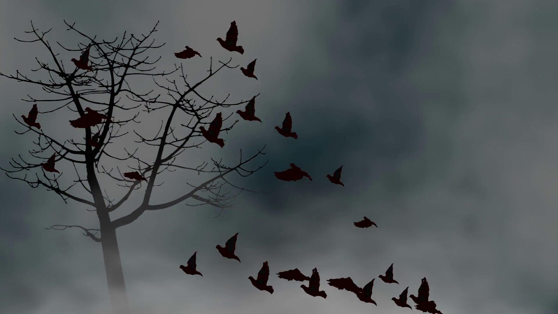 Birds flying into a cloudy sky Motion Background - Videoblocks