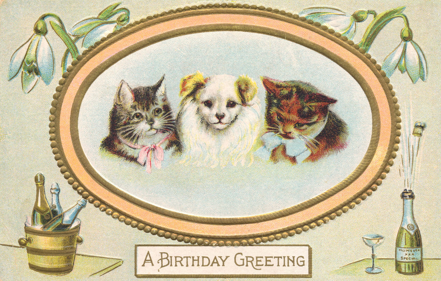 Birthday greeting card - circa 1910s photo