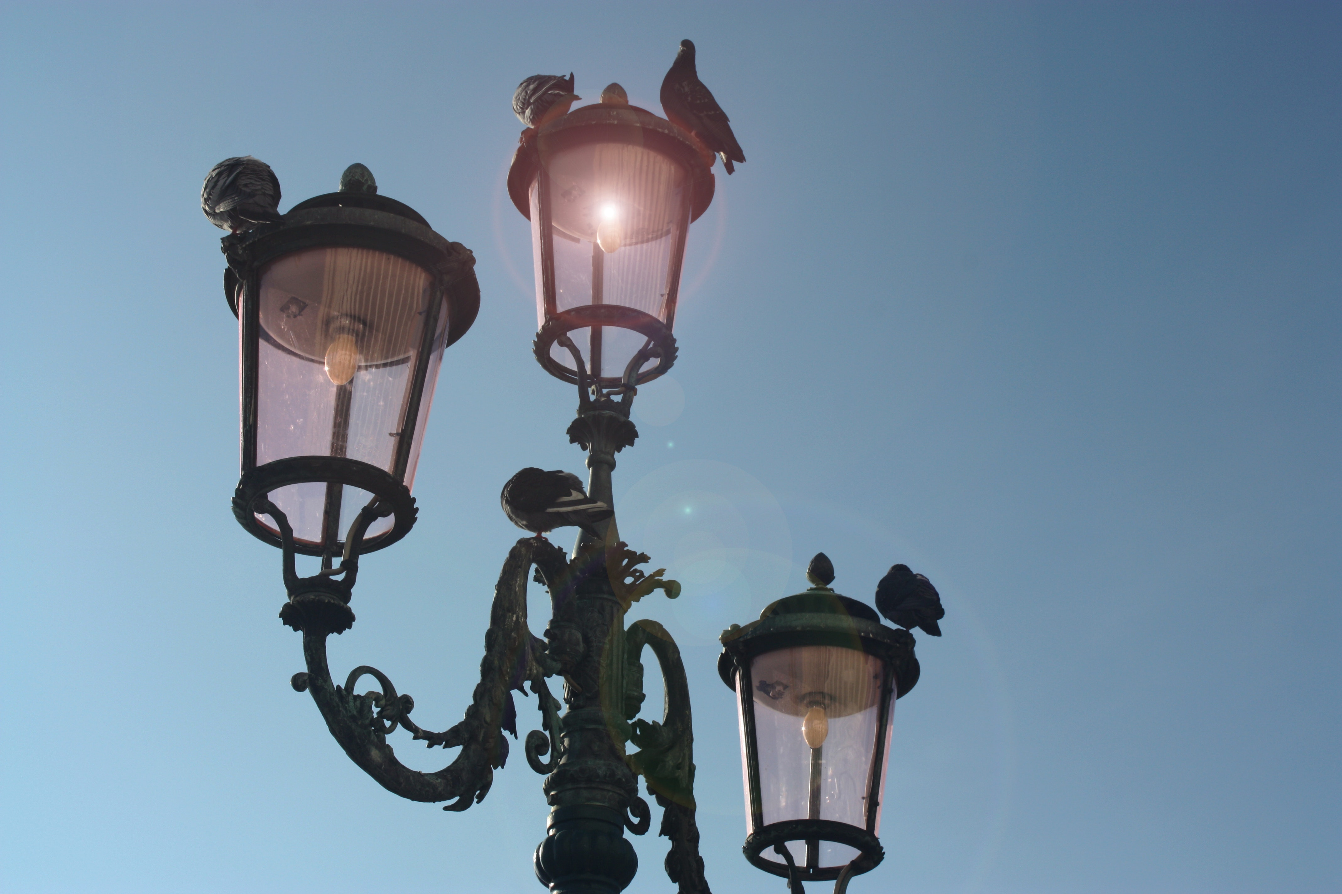 Black 3-light Post Lamp Under Blue Sky, Antique, Lamp, Venice, Traditional, HQ Photo