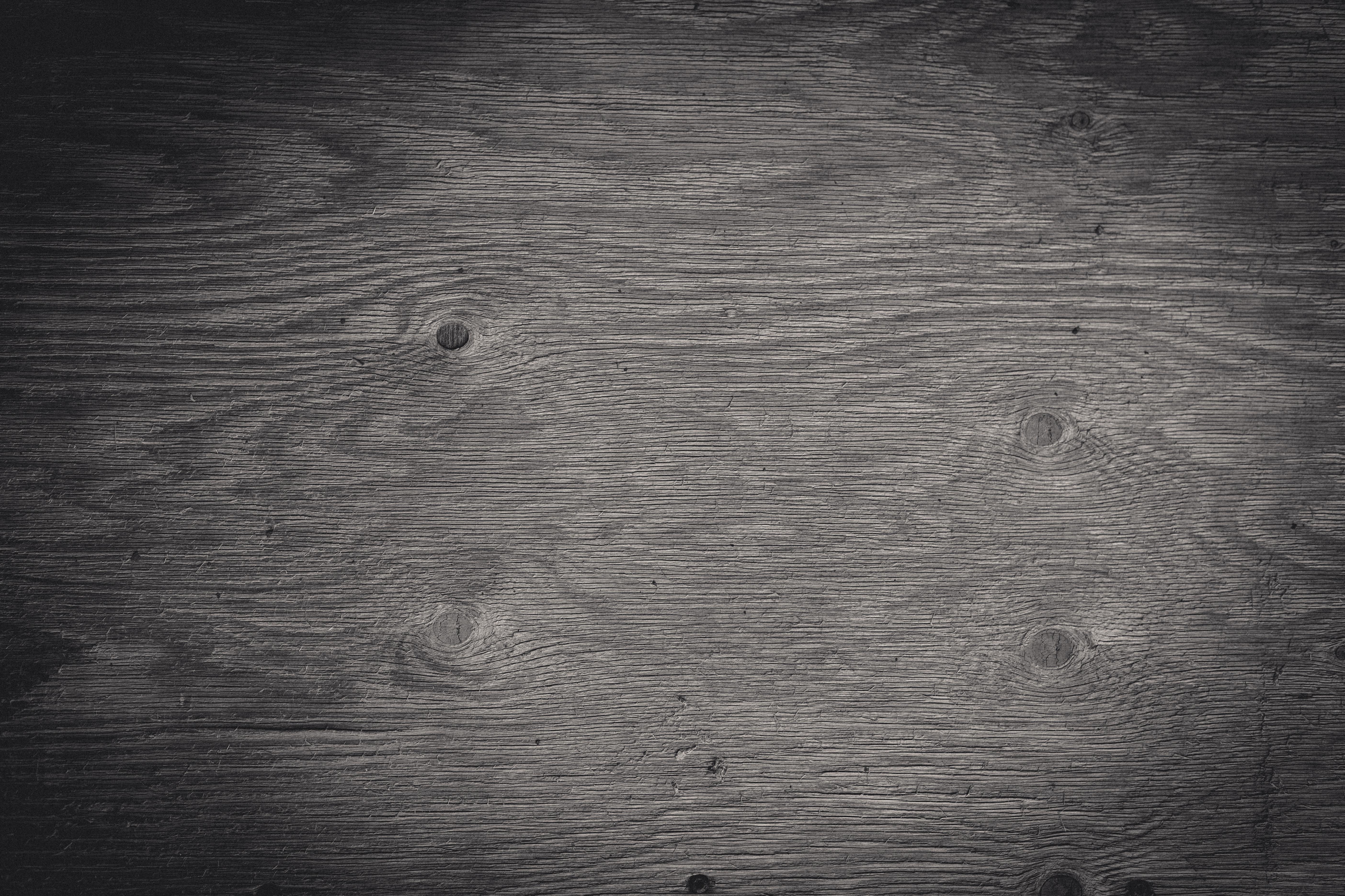 Black & white wood texture photo
