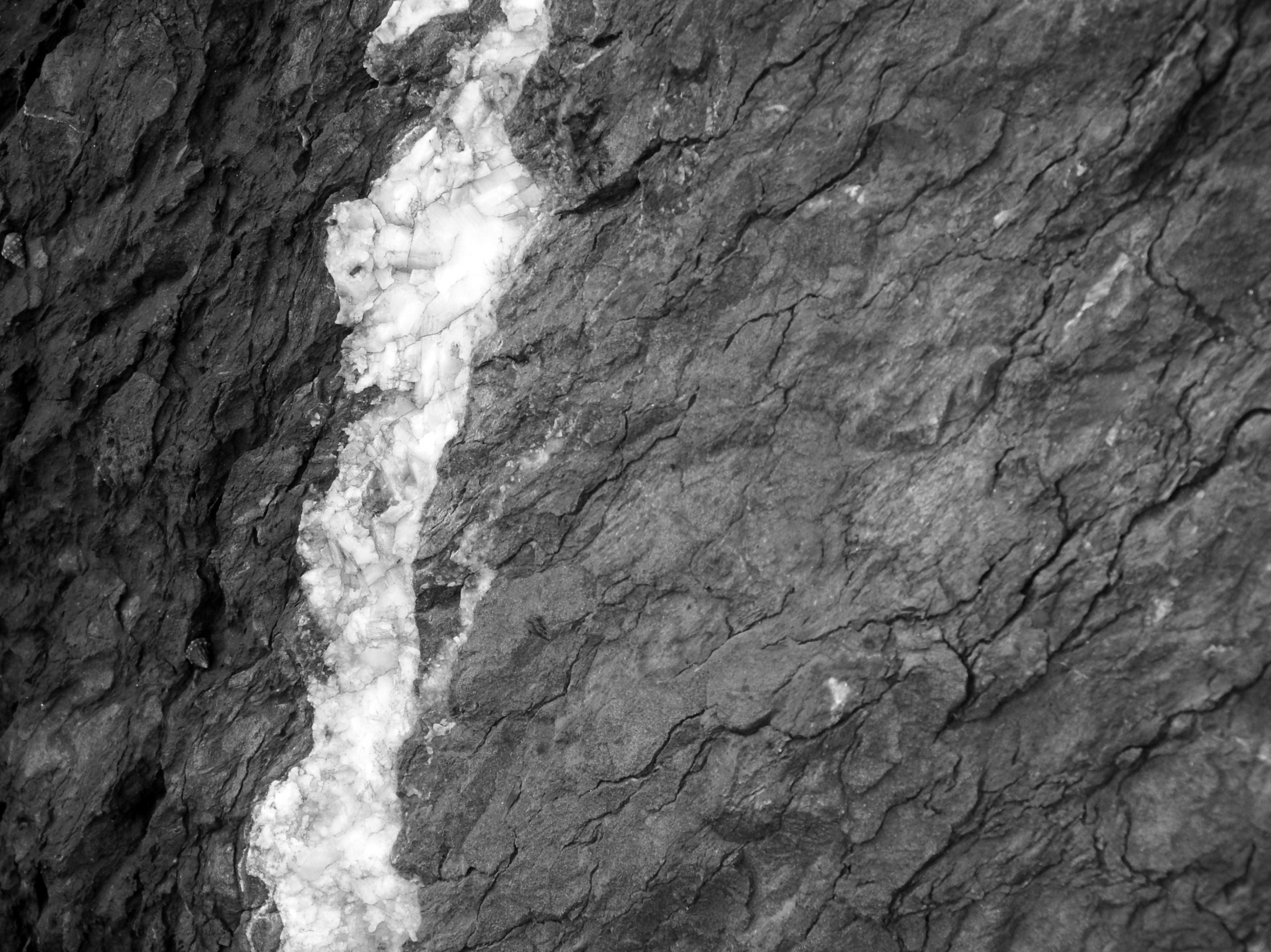 Black and white rock texture photo