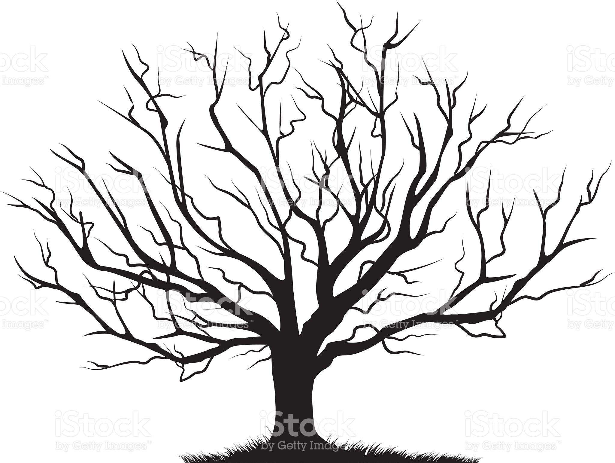 Windy silhouette tree photo