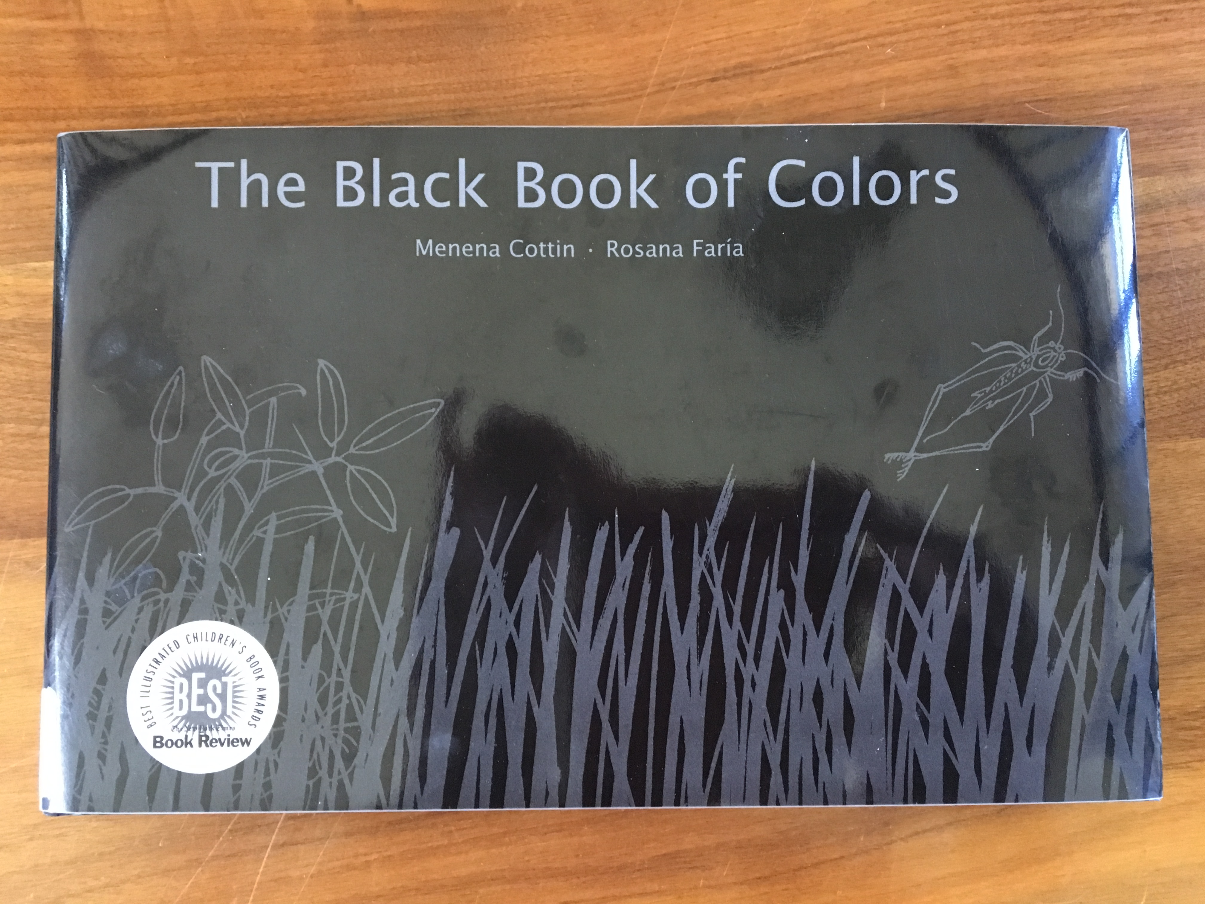 Book Review: The Black Book of Colors | Angelica Free Library