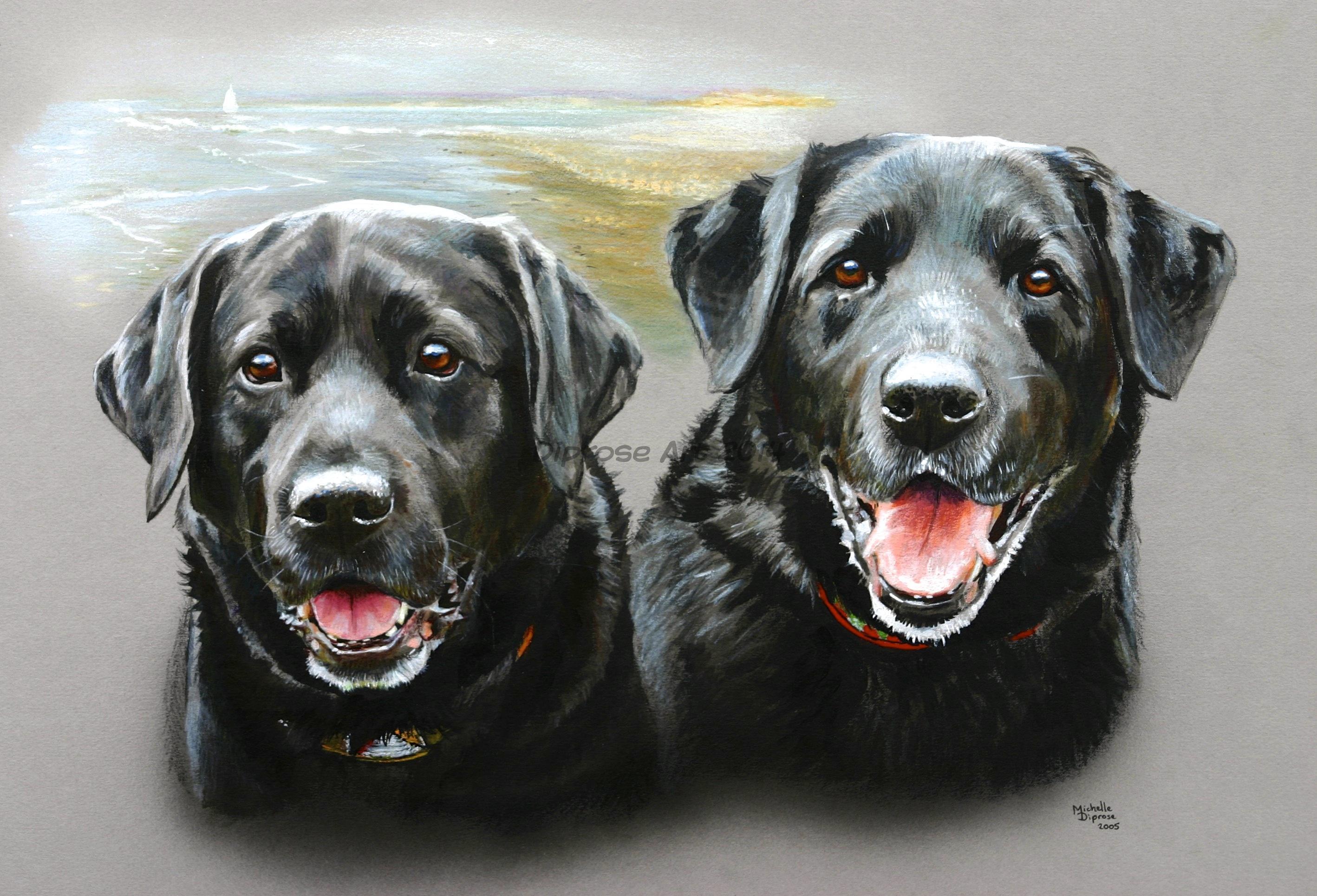 Black dog portrait photo