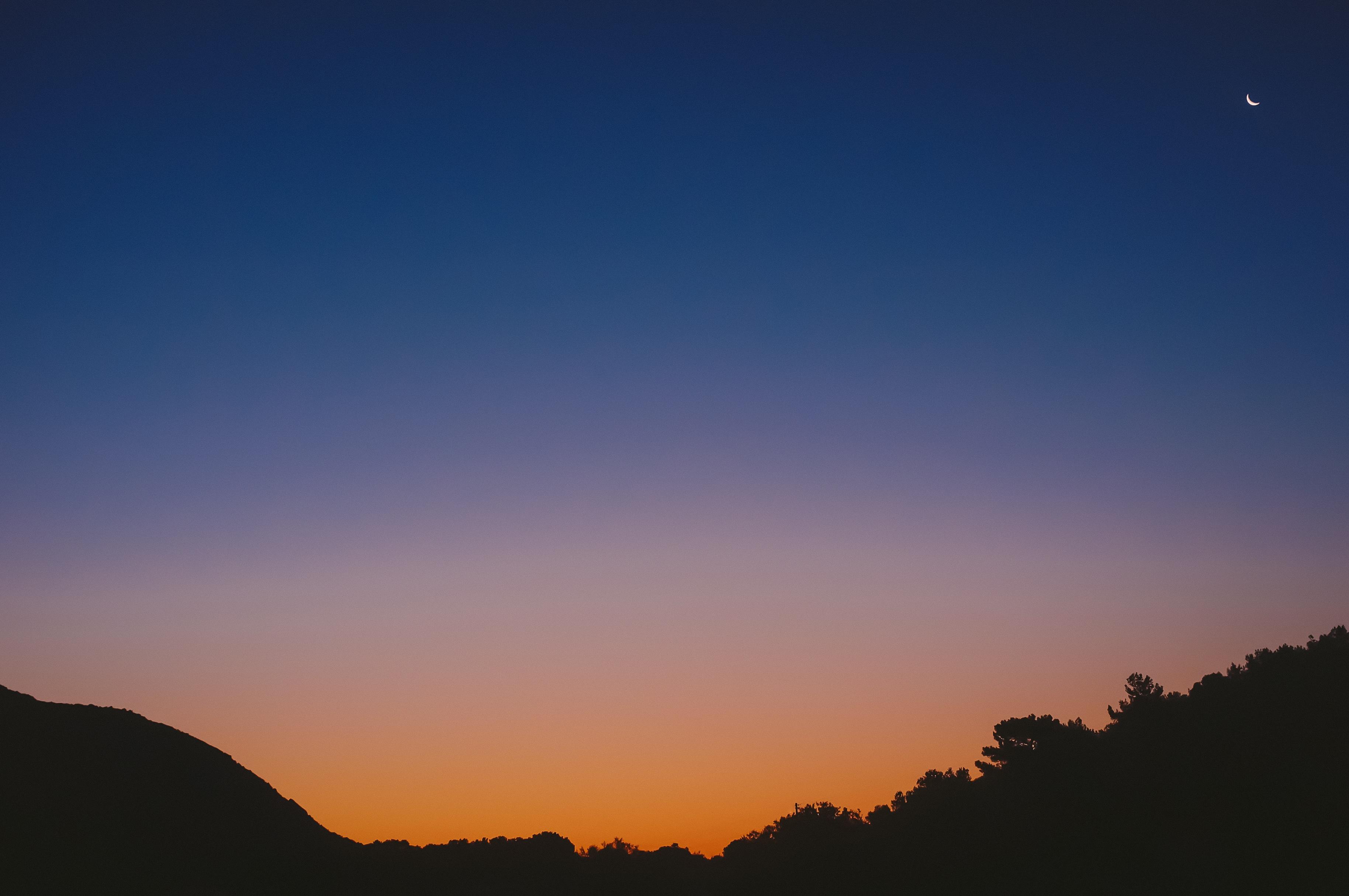 Black landscape, Black, Dark, Forest, Landscape, HQ Photo