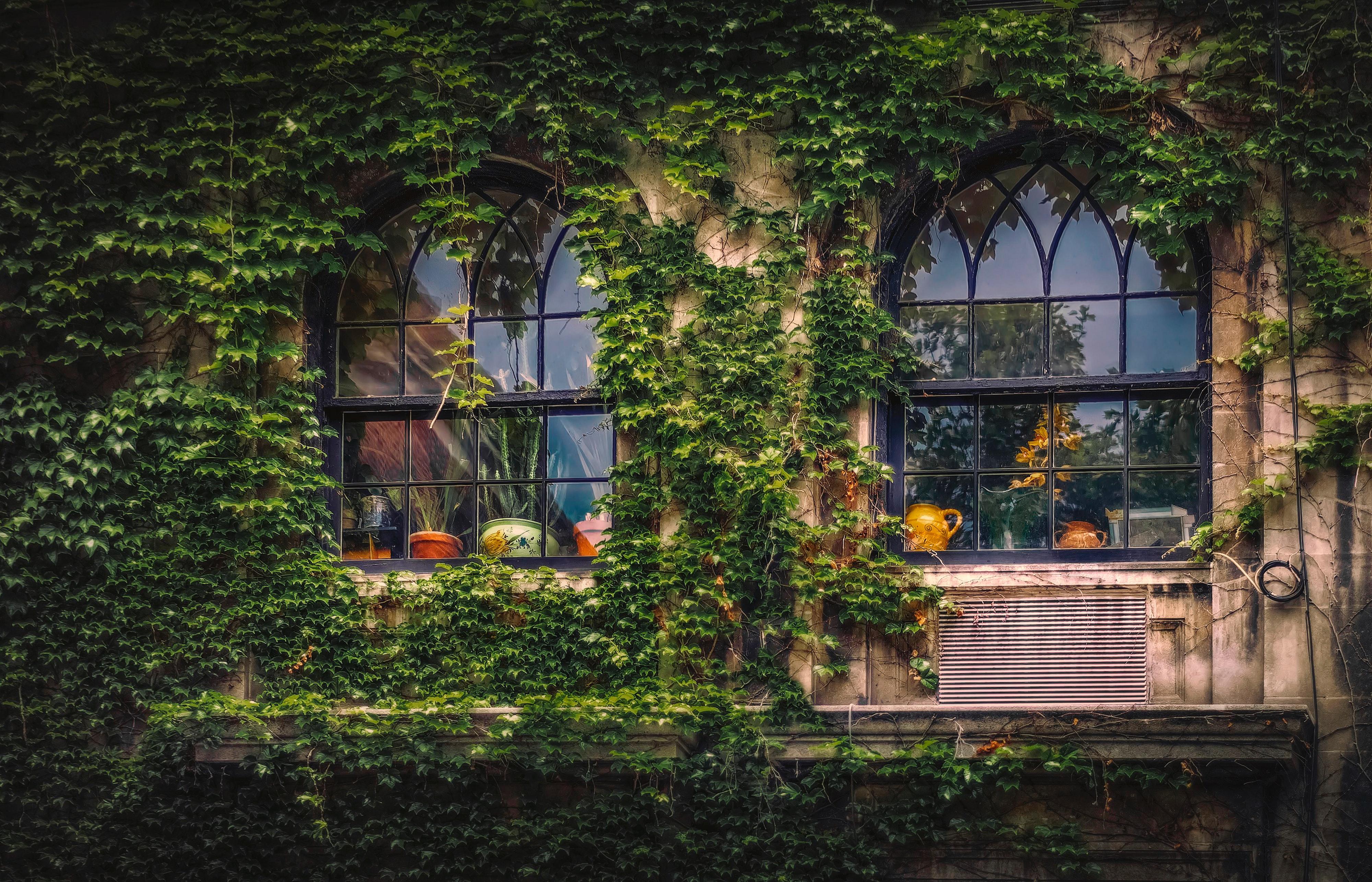 Black metal frame glass window photo