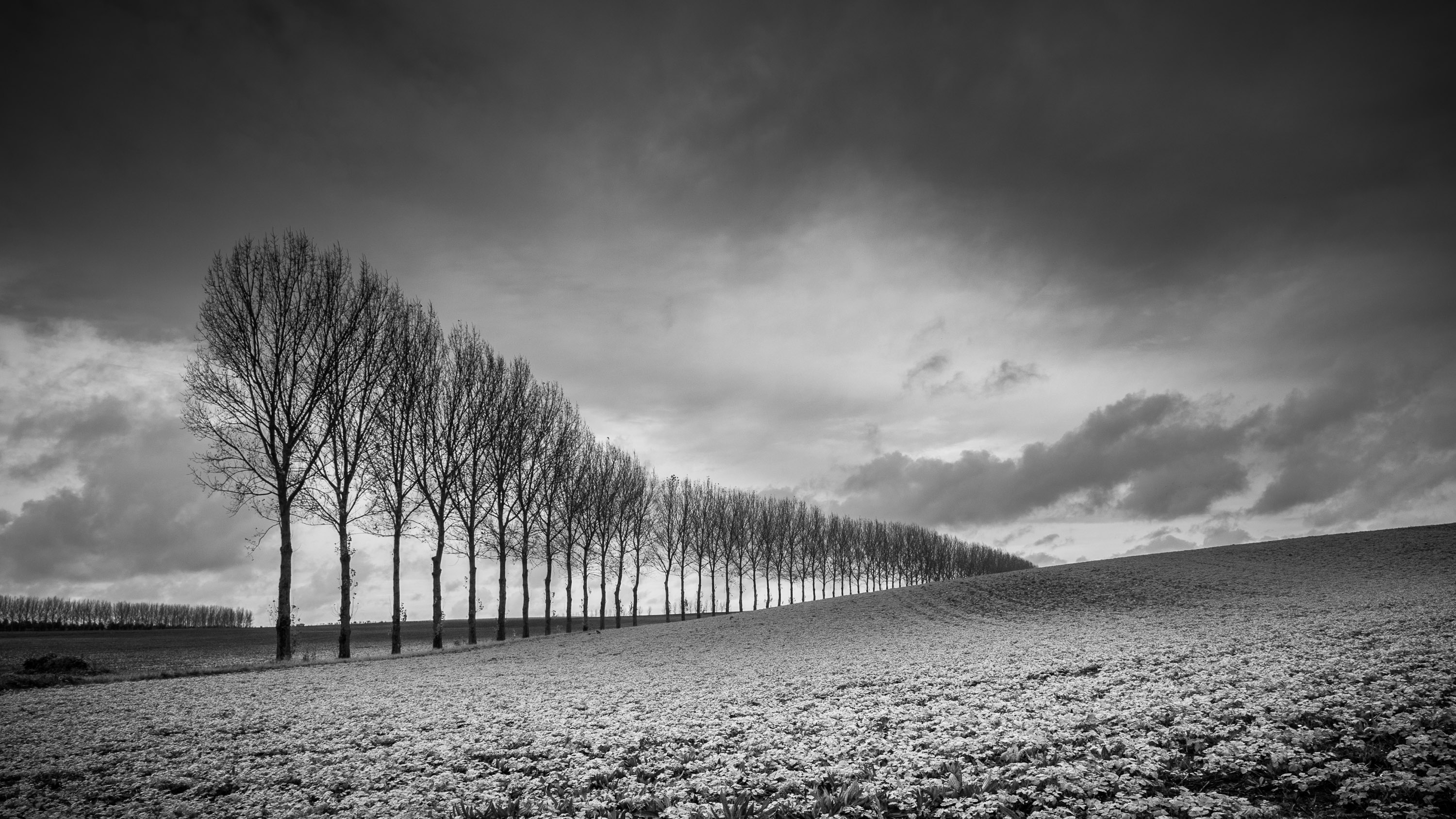 How to master black and white photography | TechRadar