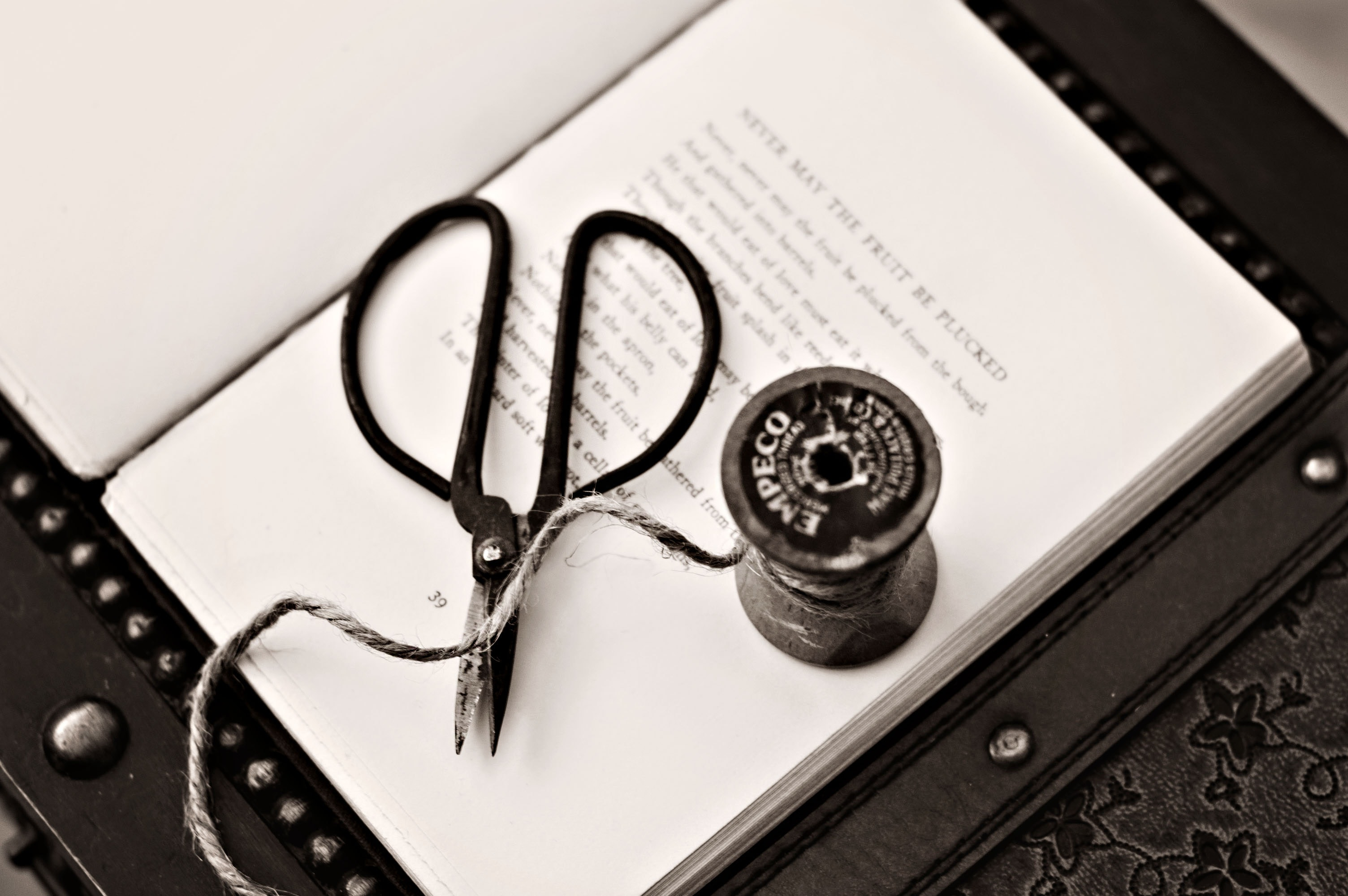Black Scissors Near Thread Reel on White Book Page, Blur, Book, Book pages, Close -up, HQ Photo