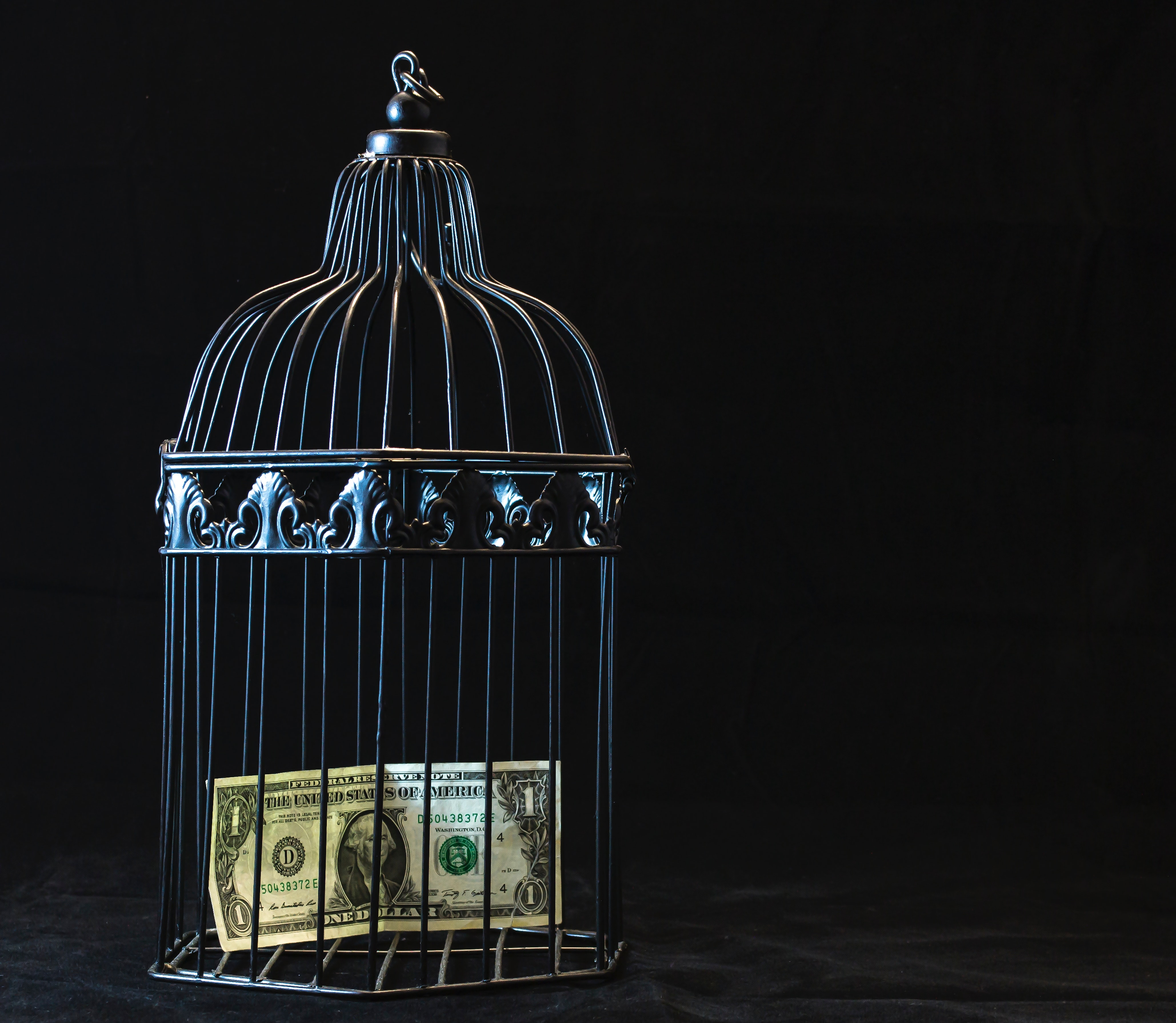 Black steel pet cage with one dollar photo