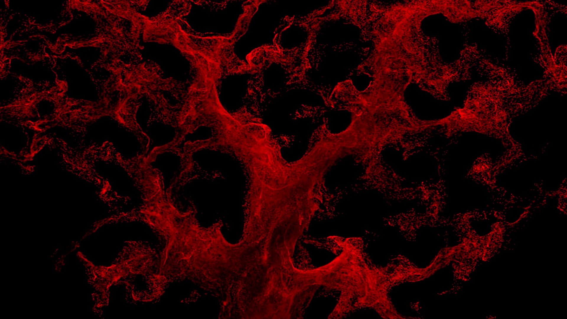 Abstract red blood cells isolated on black background. Motion ...