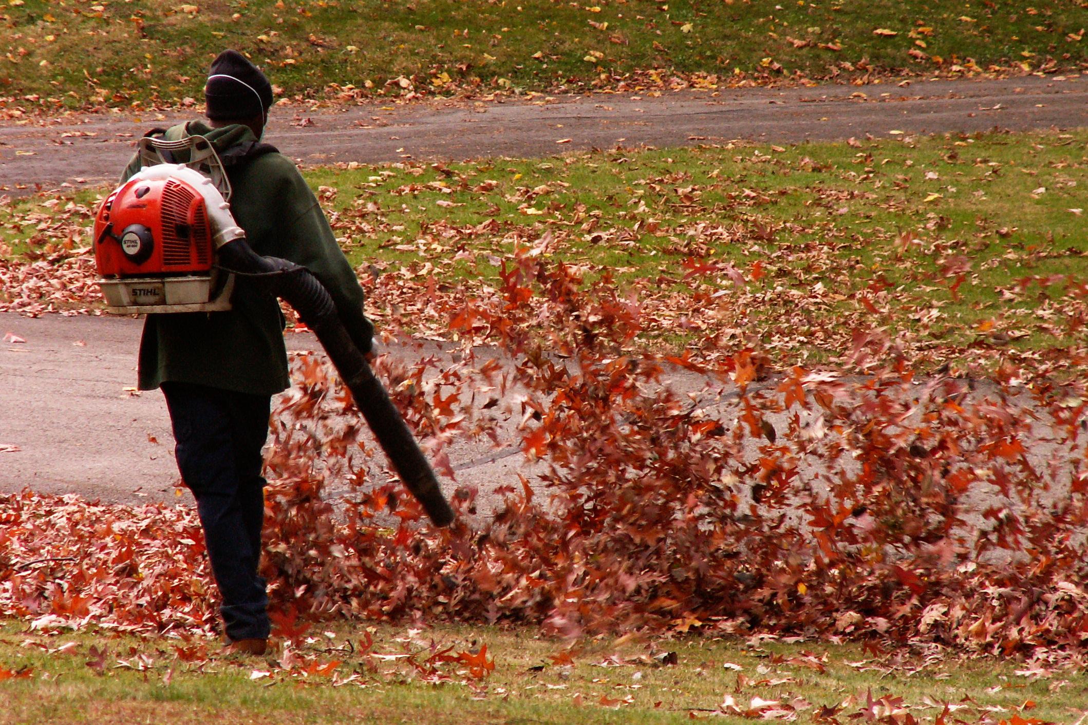 Leaf Blowing Tips   Honda Lawn Parts Blog