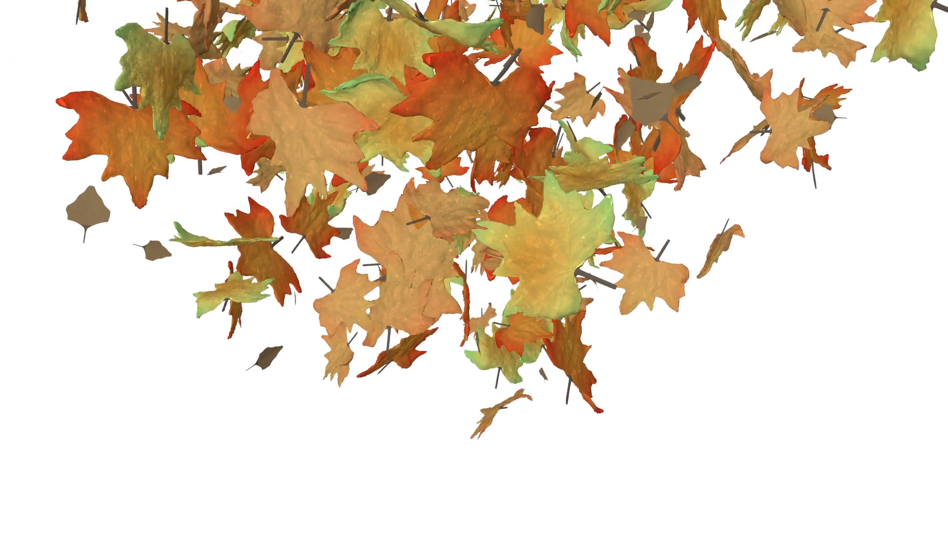 Autumn leaves spiralling to the ground and then blowing away to ...
