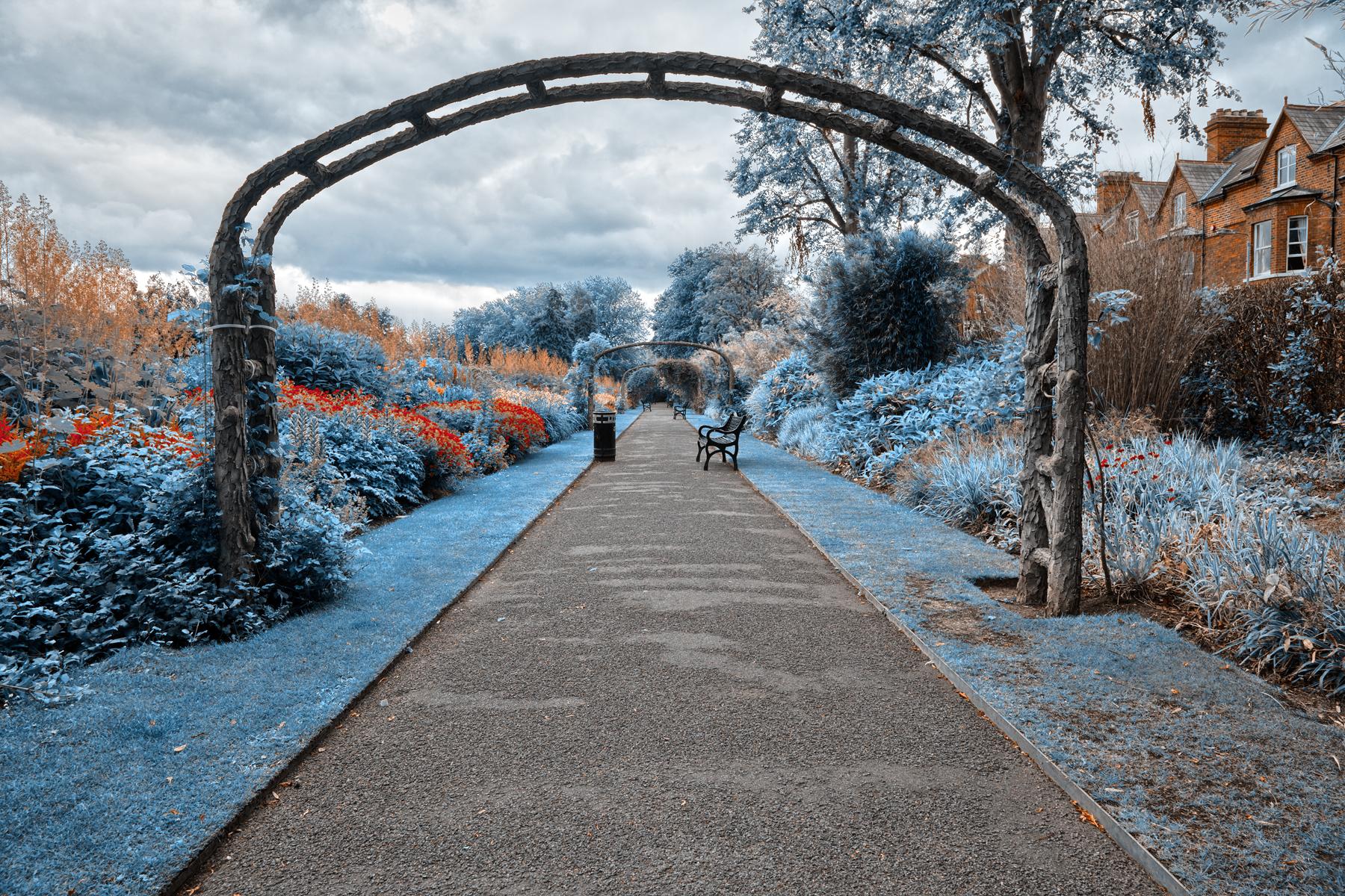 Blue belfast botanic gardens - hdr photo