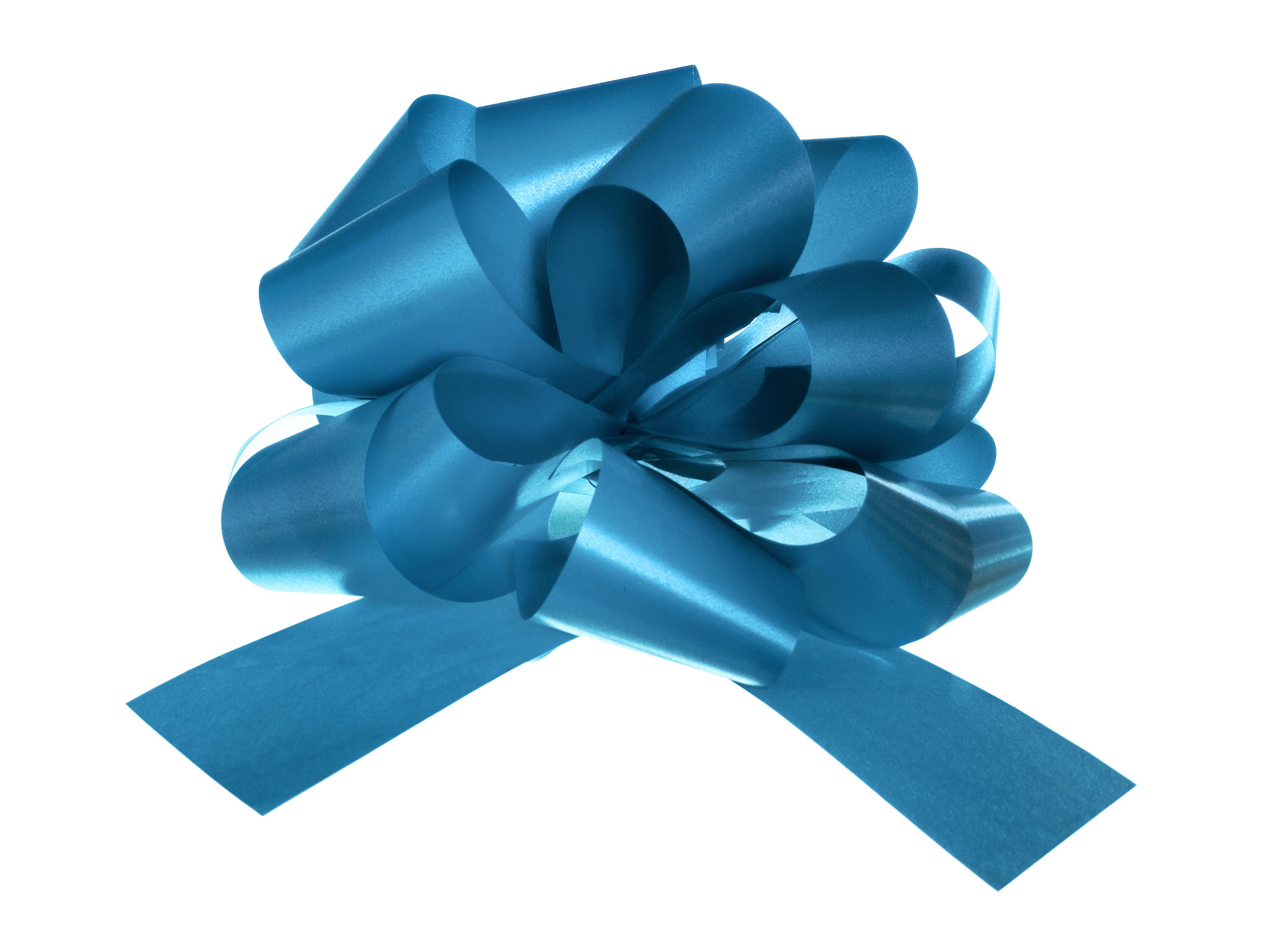 Blue bow photo