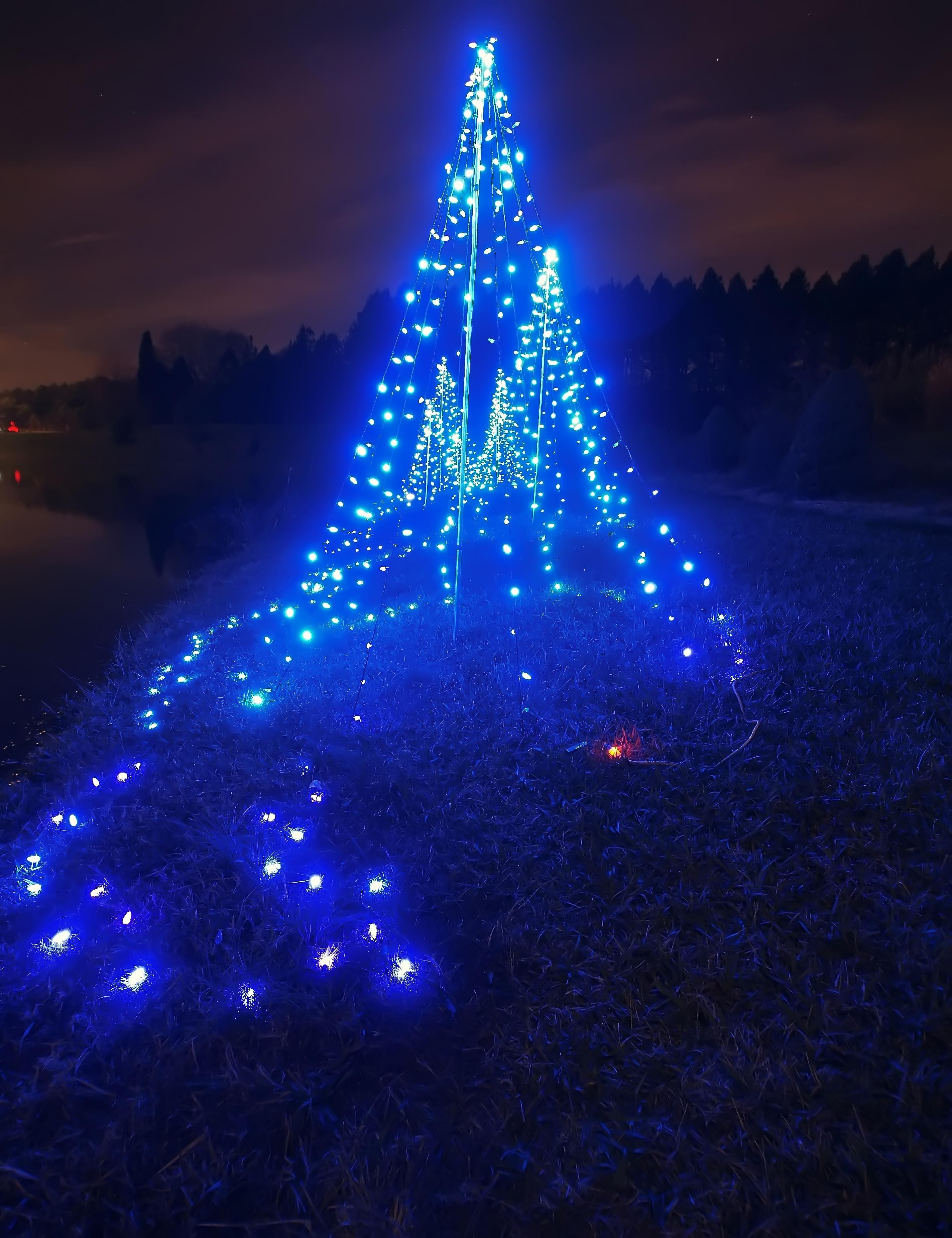 Blue christmas tree, Snow, Holiday, Ornamental, Reflection, HQ Photo