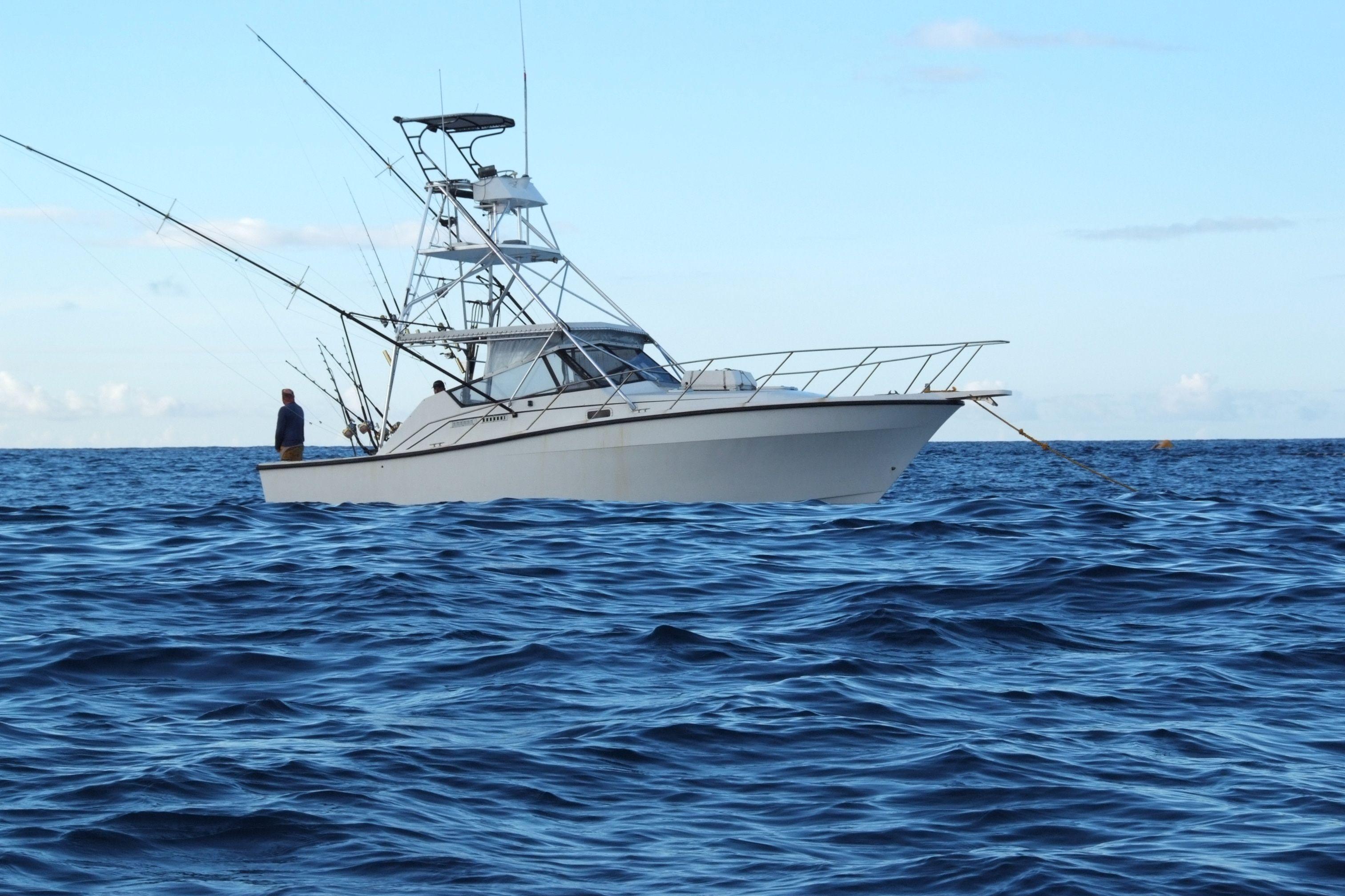Ascension Island Blue Marlin Big Game Fishing | Boats | Pinterest ...