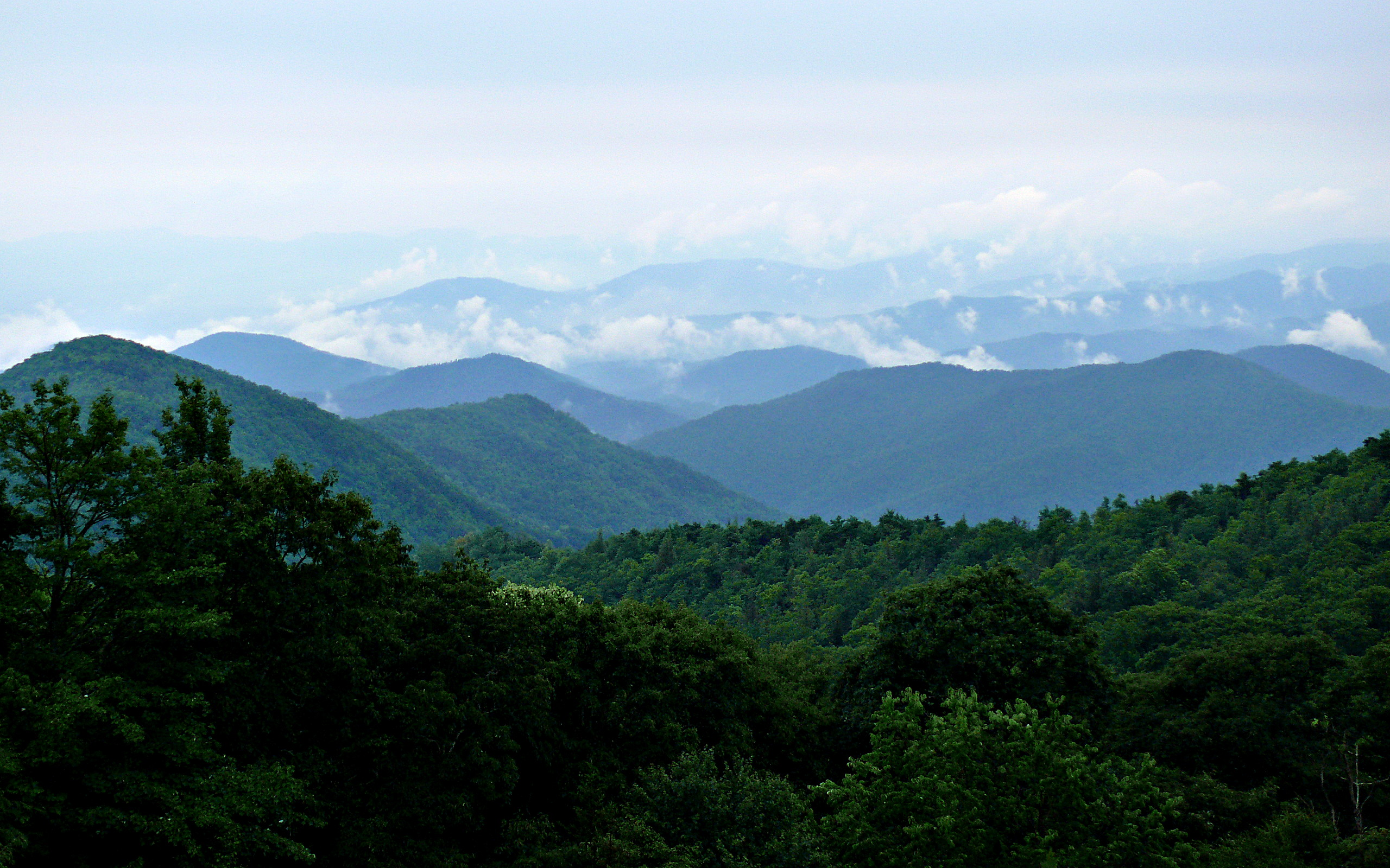 File:Rainy Blue Ridge-27527.jpg - Wikimedia Commons