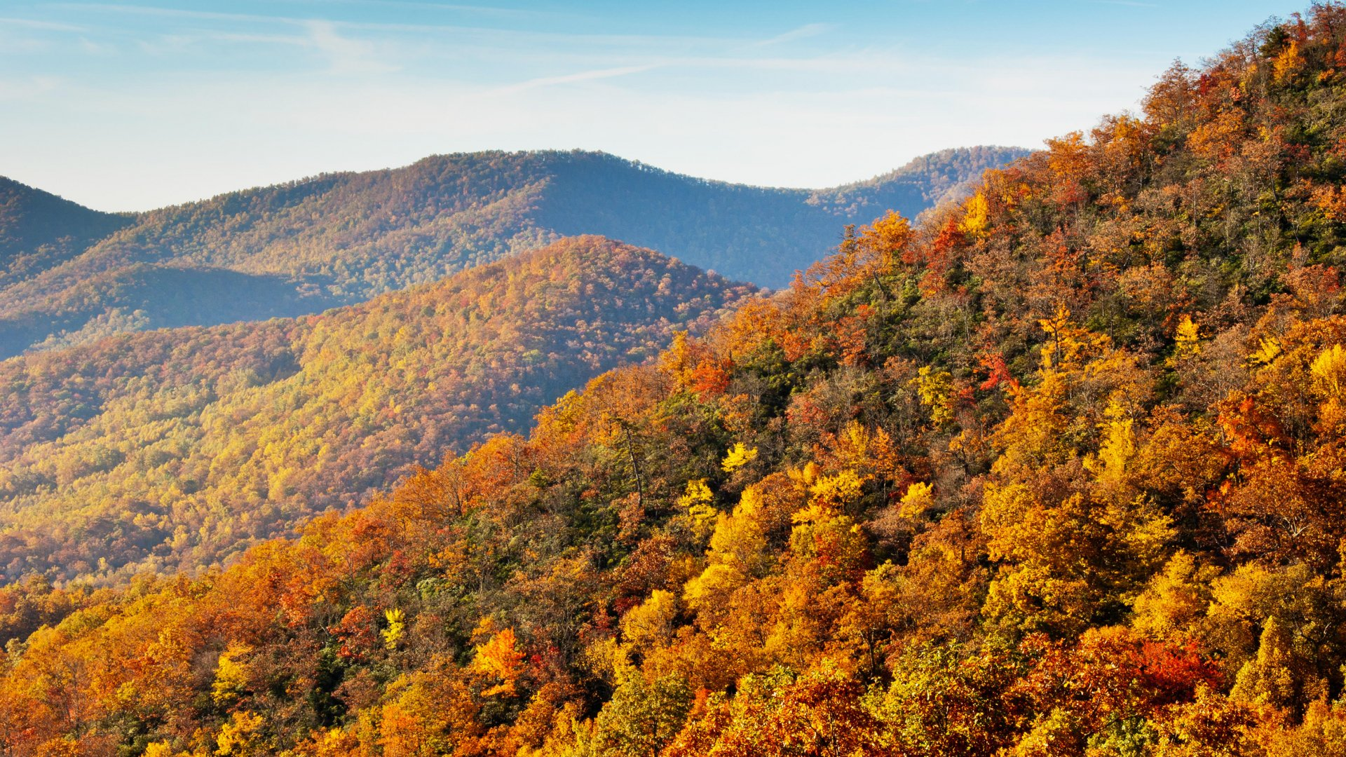 Blue Ridge Parkway | National Park Foundation