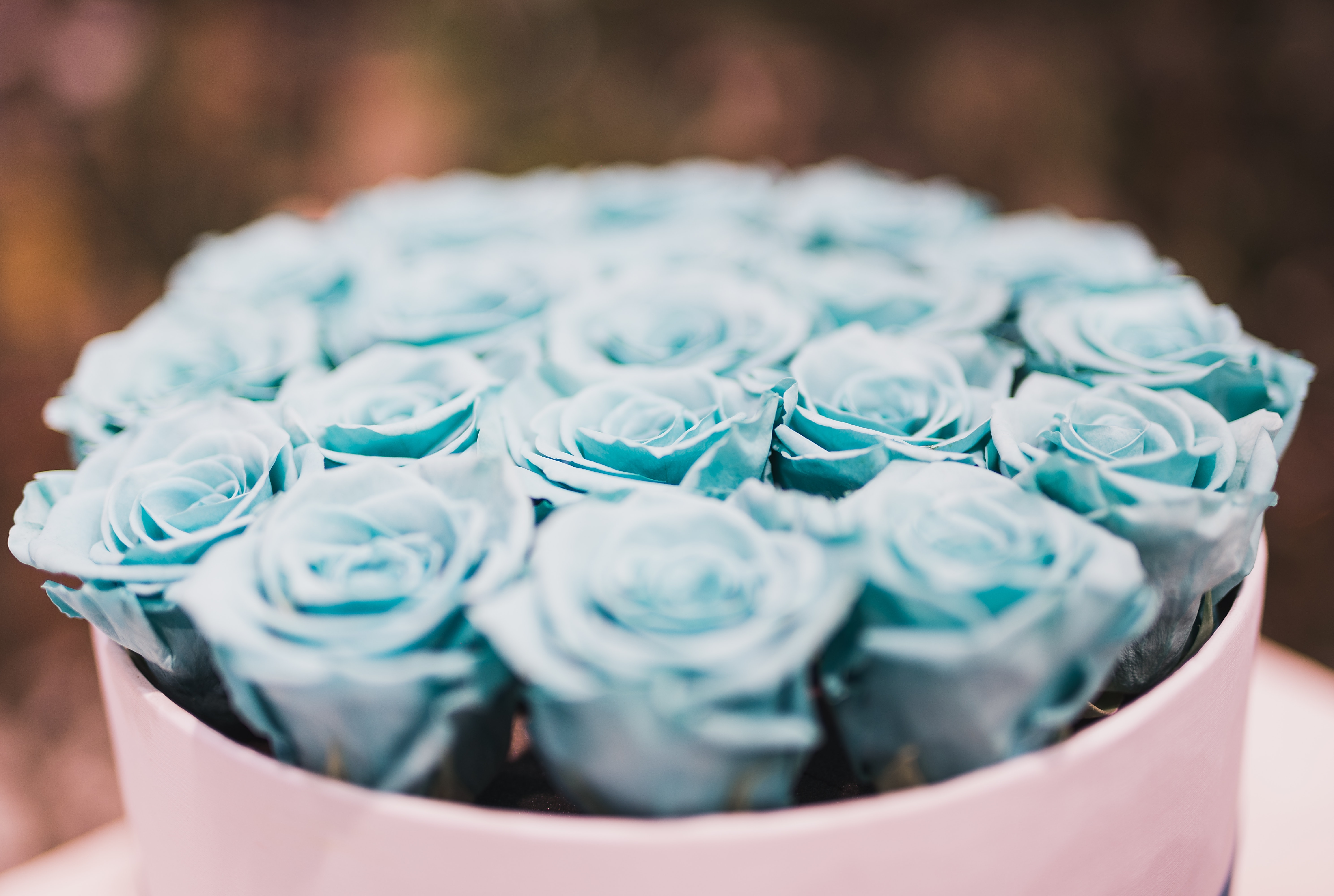 Blue rose bouquet collections photo