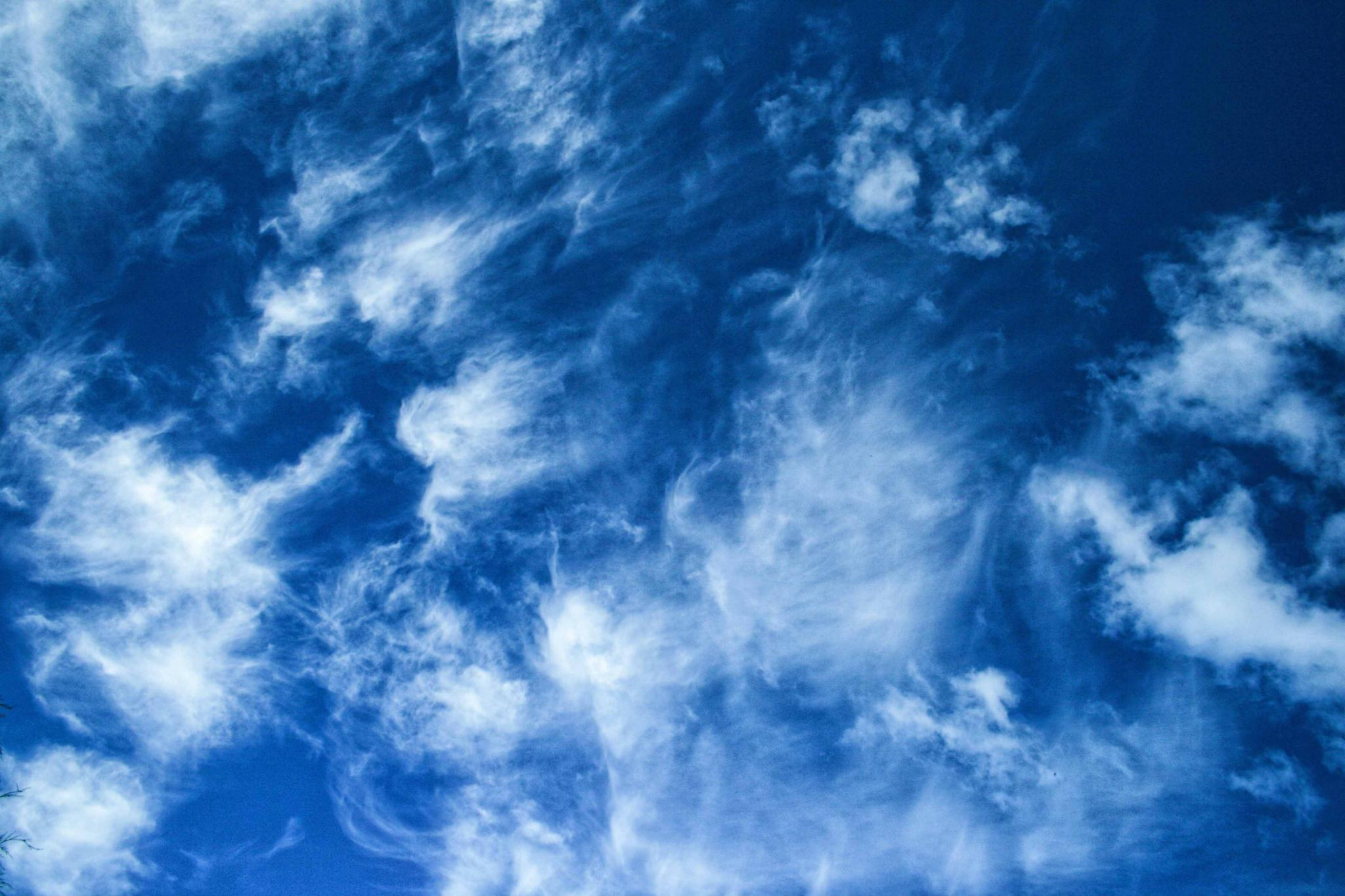 mr_blue_sky.jpg