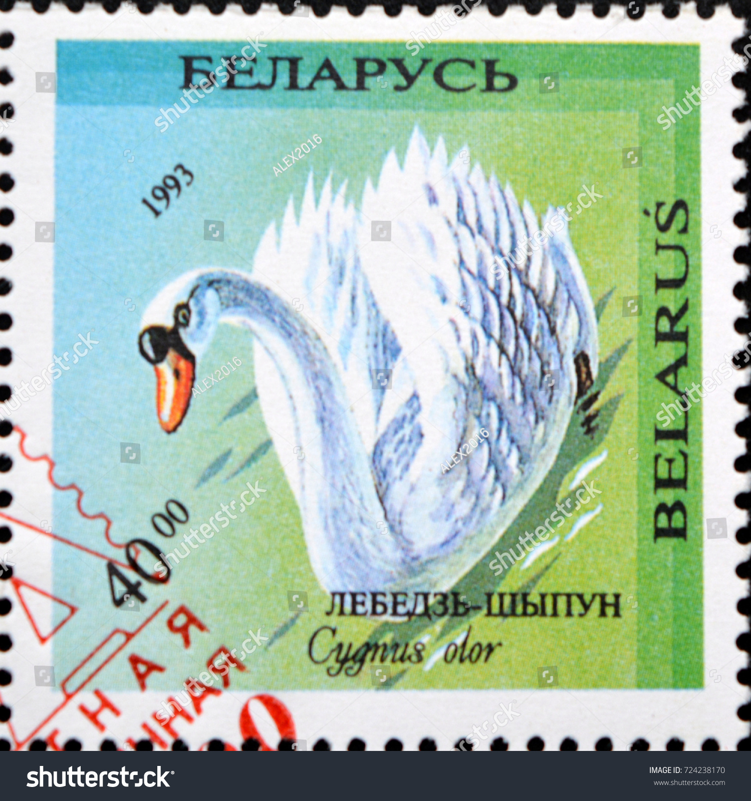 Green swan stamp photo