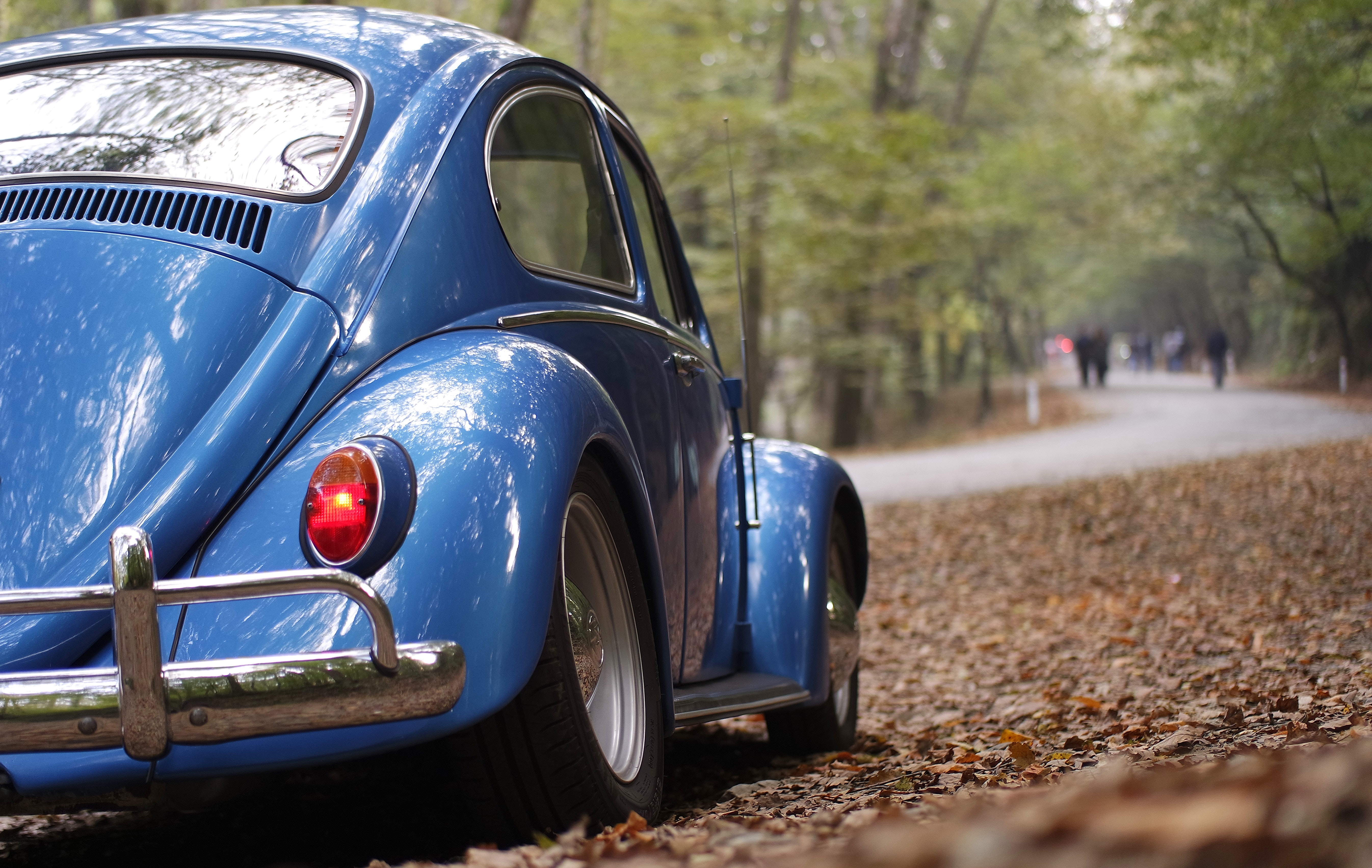 Blue volkswagen beetle vintage car surrounded by dry leaves during daytime photo