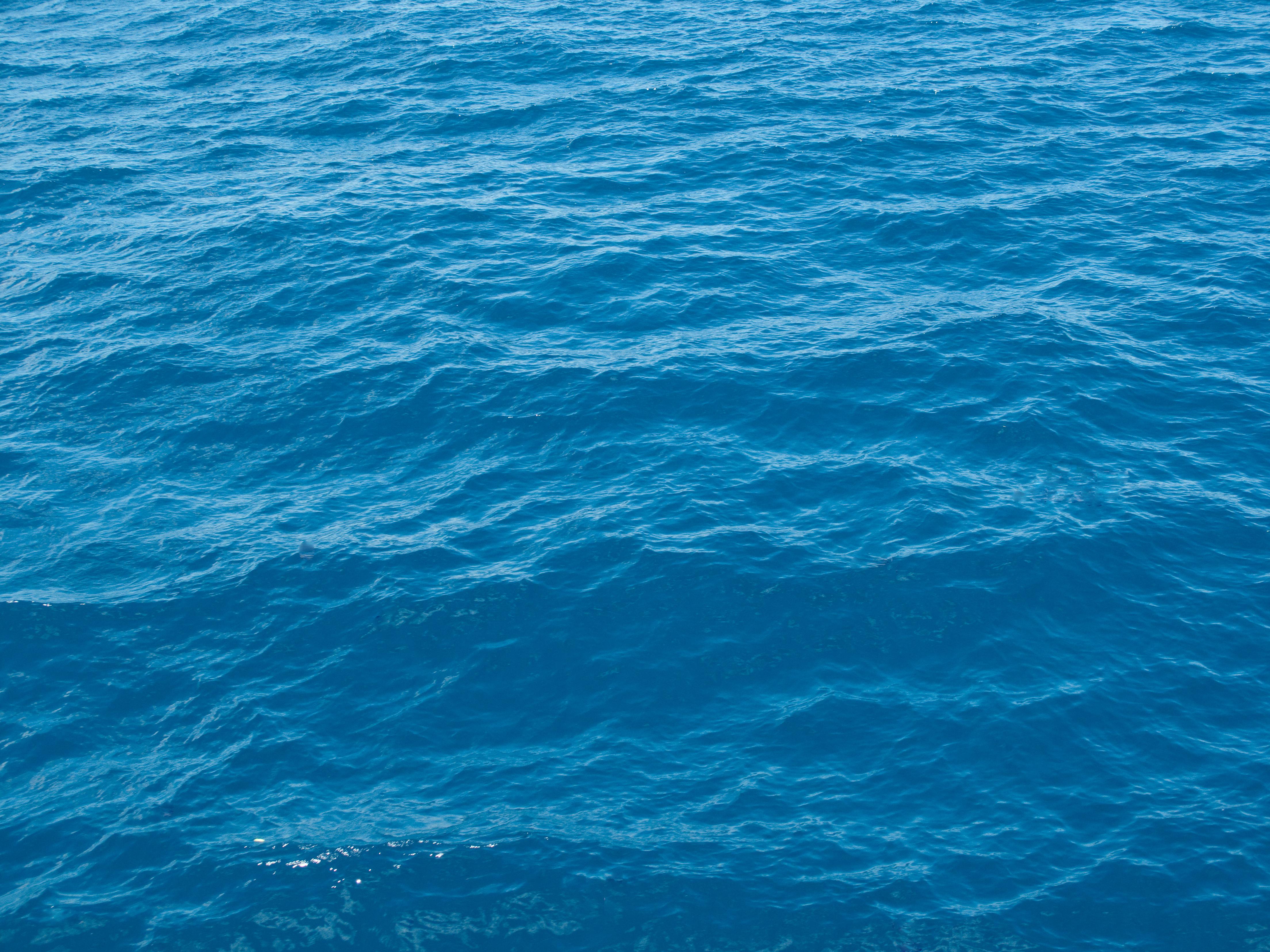File:Blue water, Lake Tahoe.jpg - Wikimedia Commons