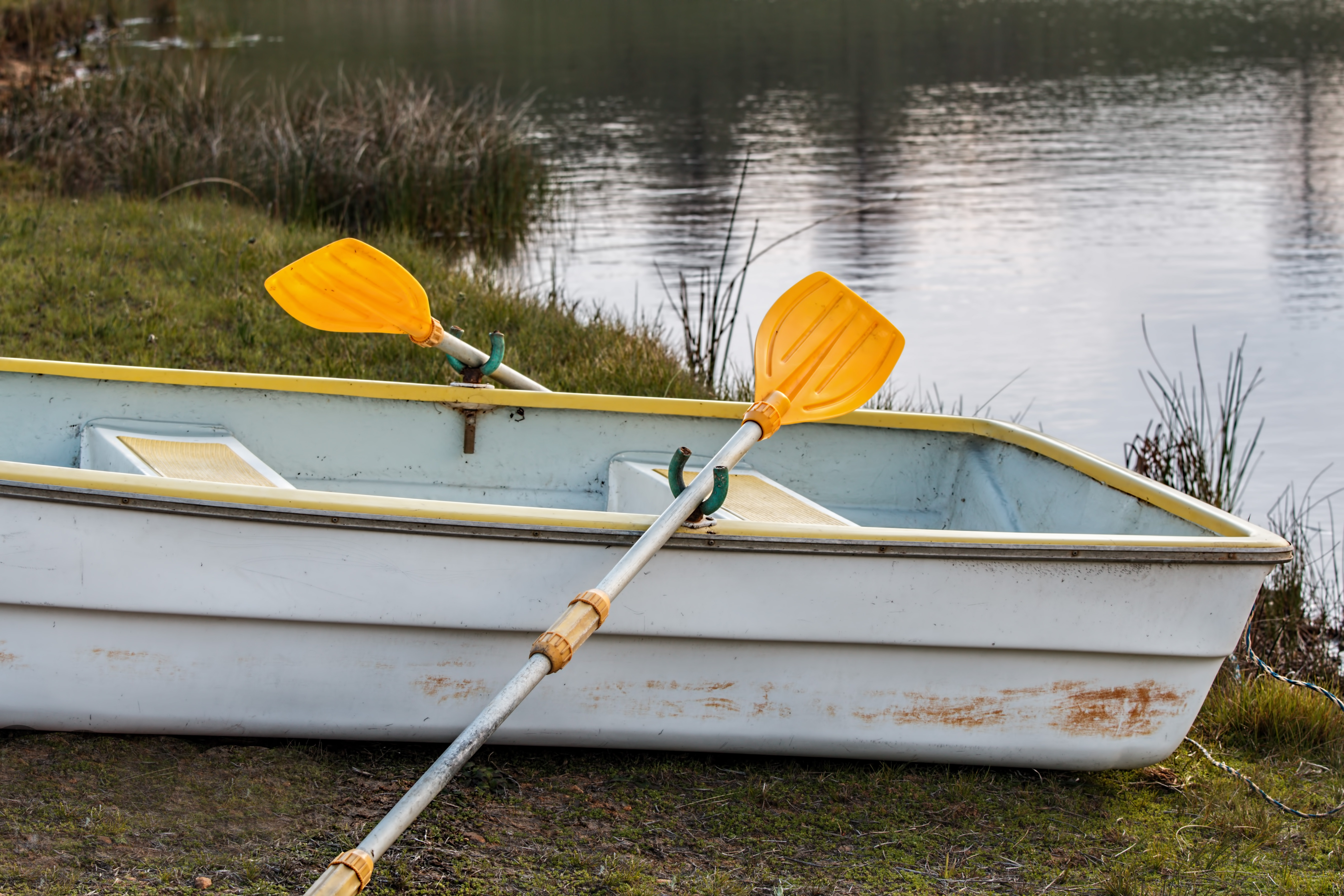 Boat, Lake, River, Row, Rowing, HQ Photo