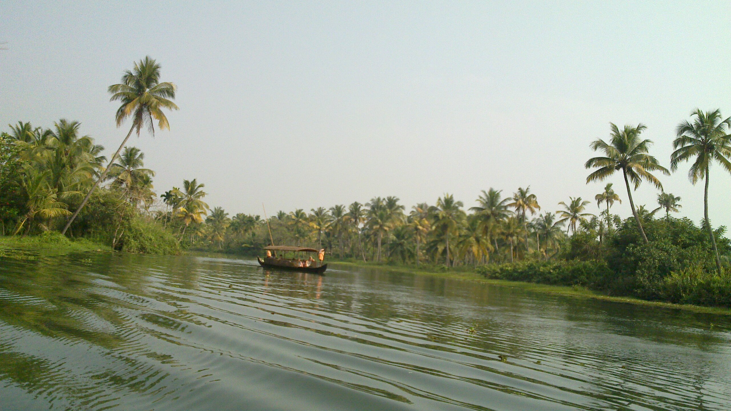 Boat on the river, Boat, India, Palms, River, HQ Photo