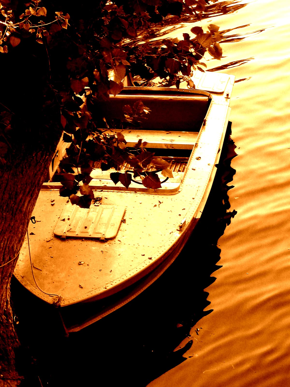 Boat on the river photo