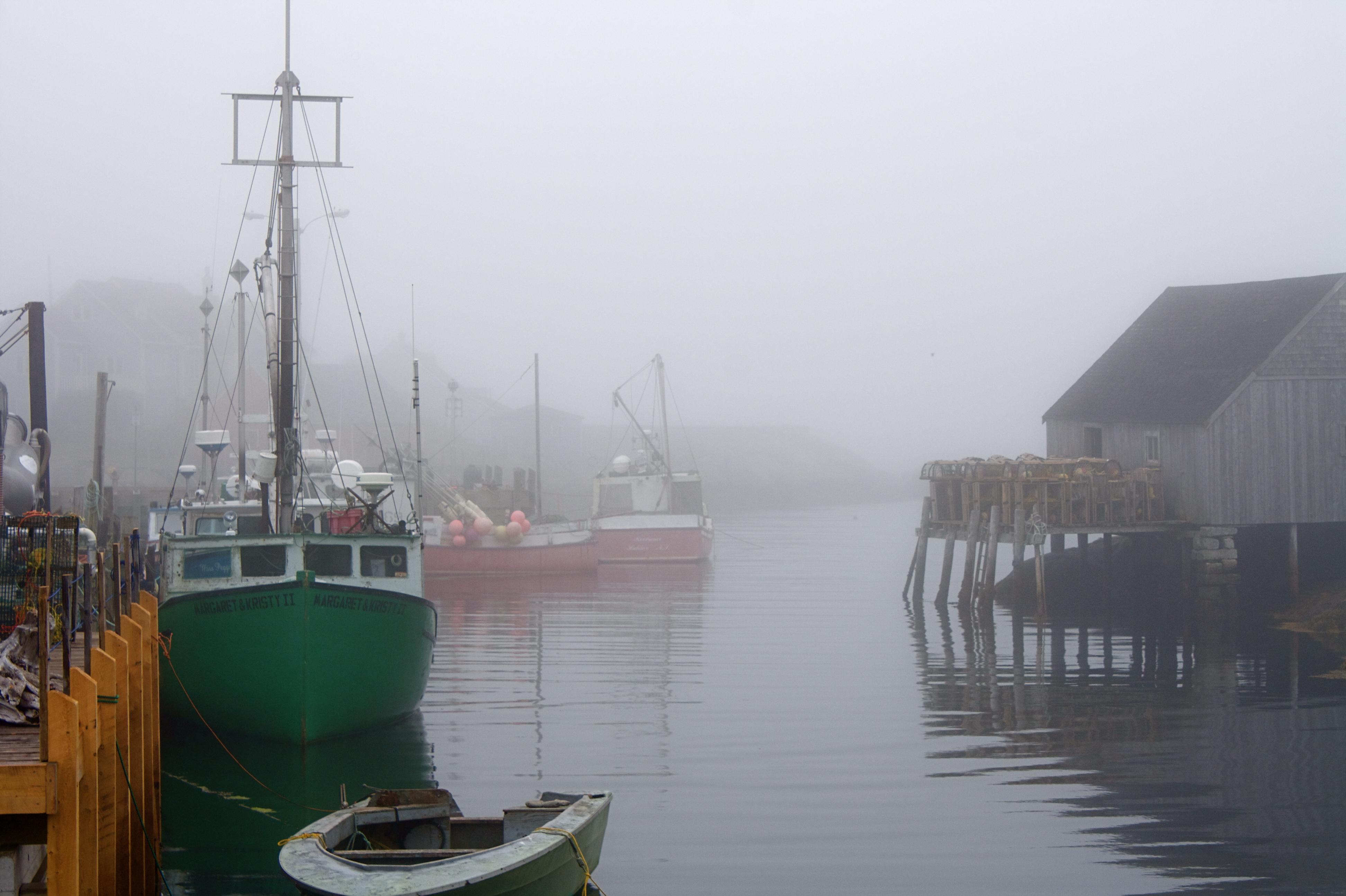 Boats photo