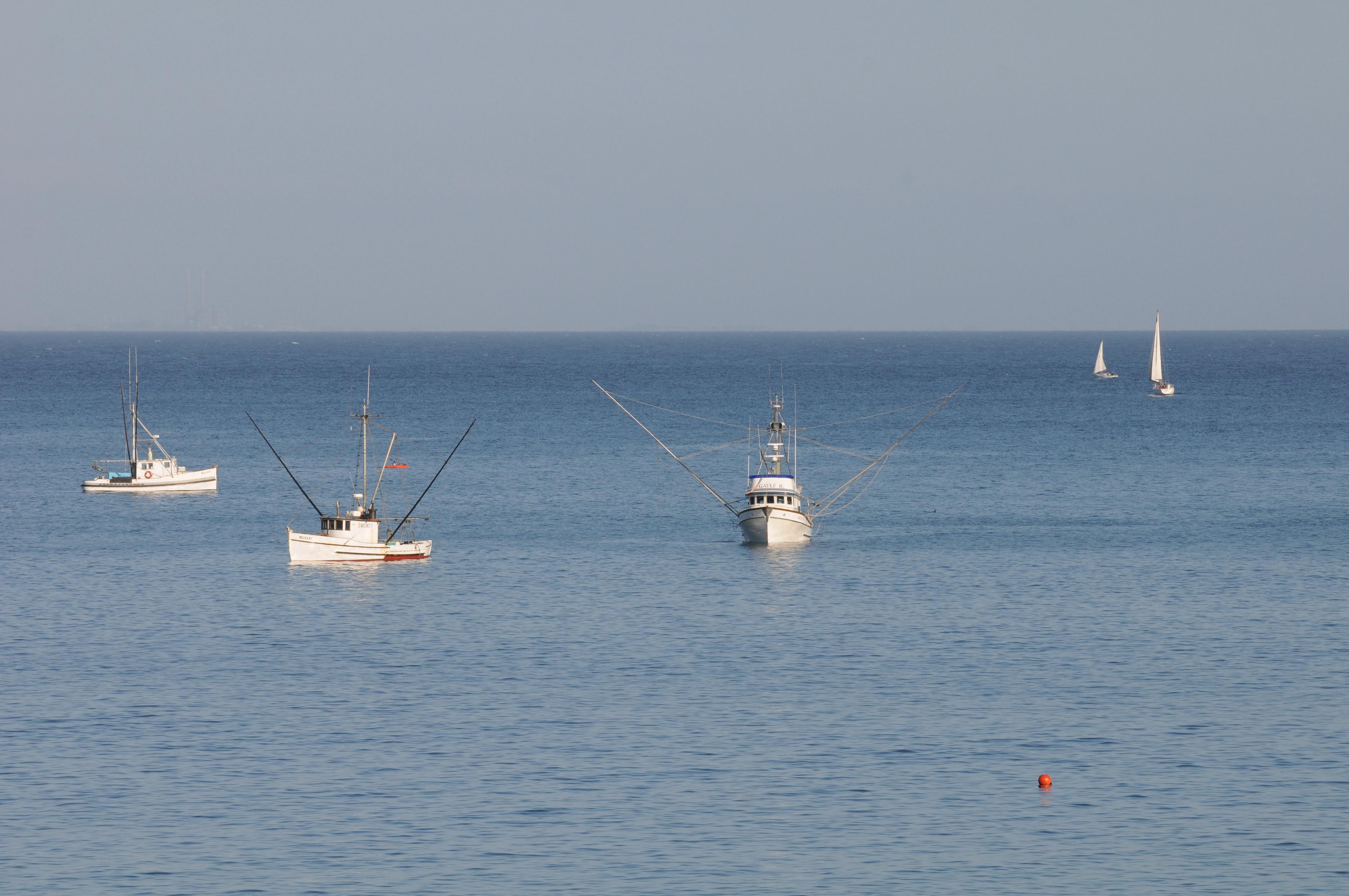 Boats on sea near shore photo
