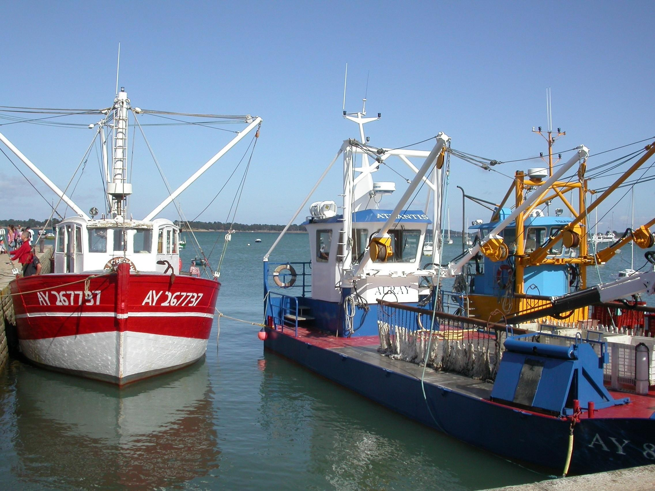 Boats on the port photo