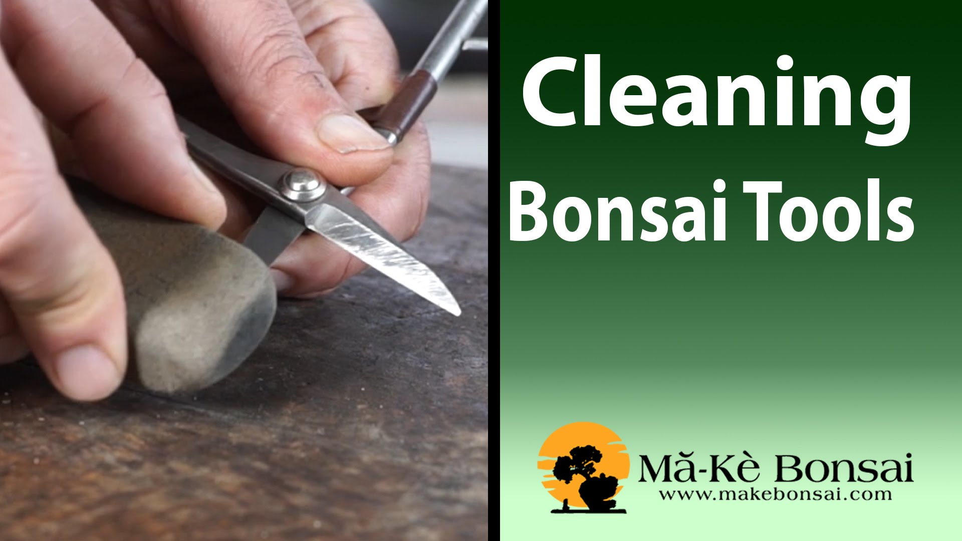 86) Bonsai Tools for Beginners Basic Bonsai Tools Care and Cleaning ...