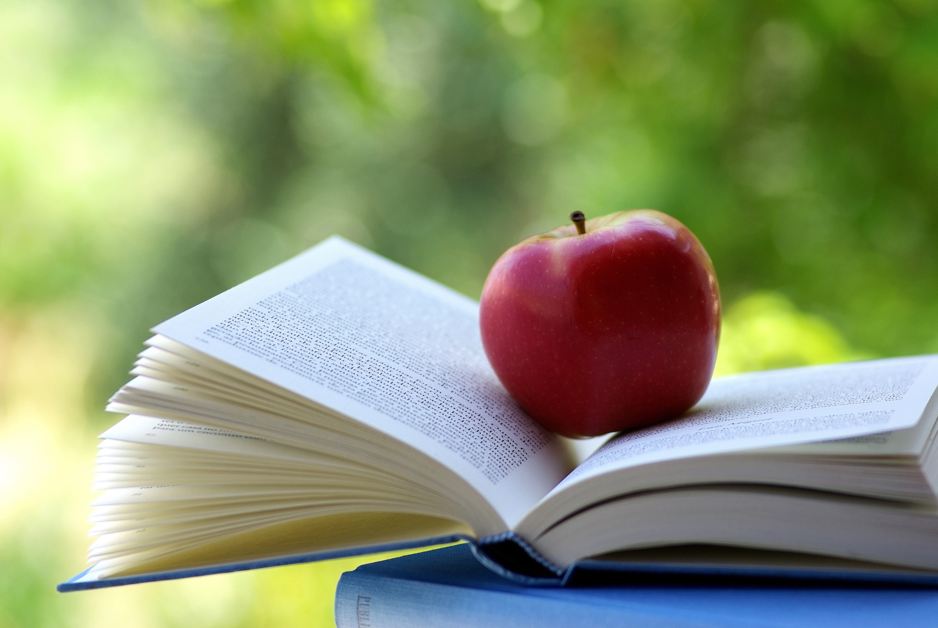 Book and apple photo