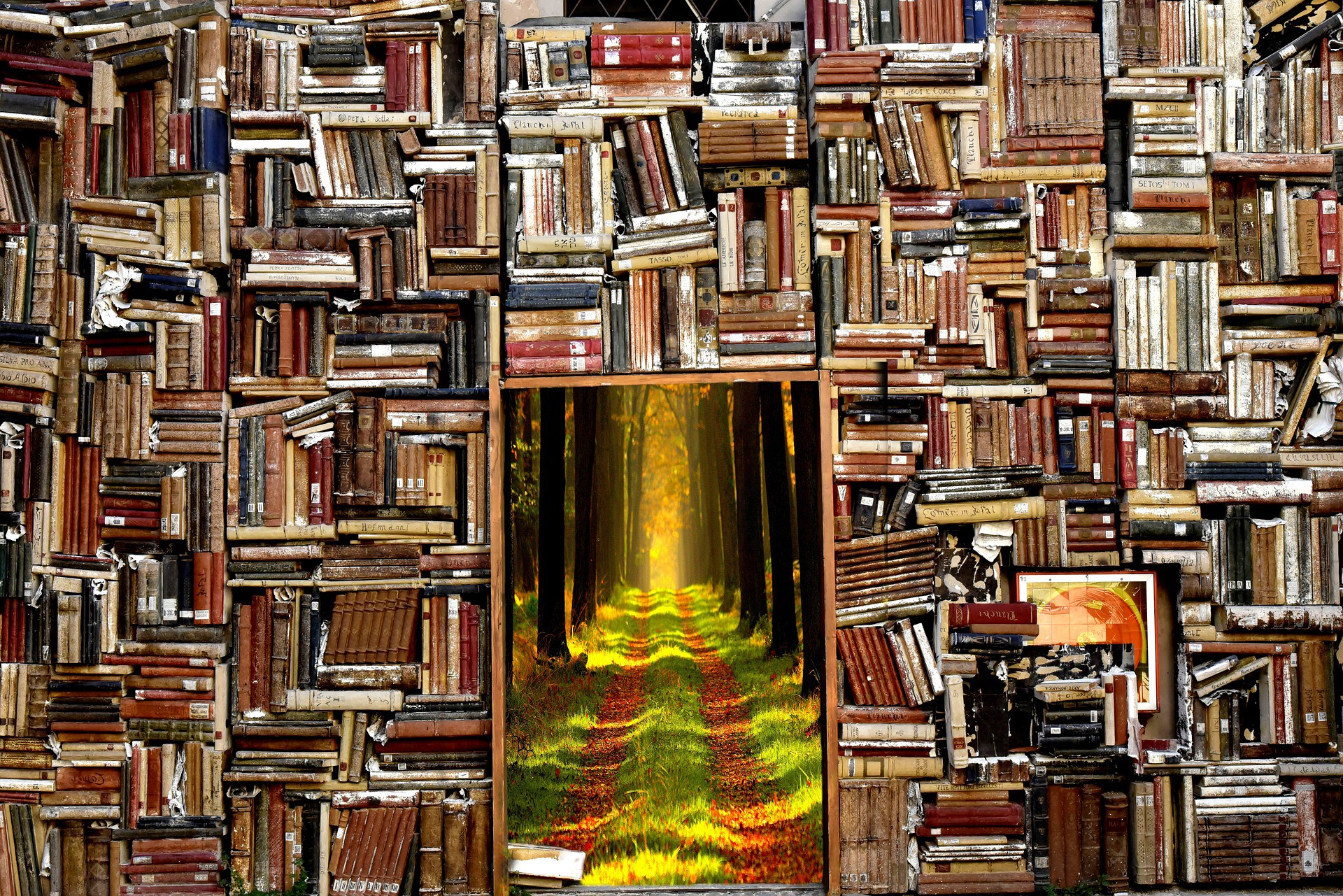 Through Books, I Learned to Love the Natural World I Never Saw