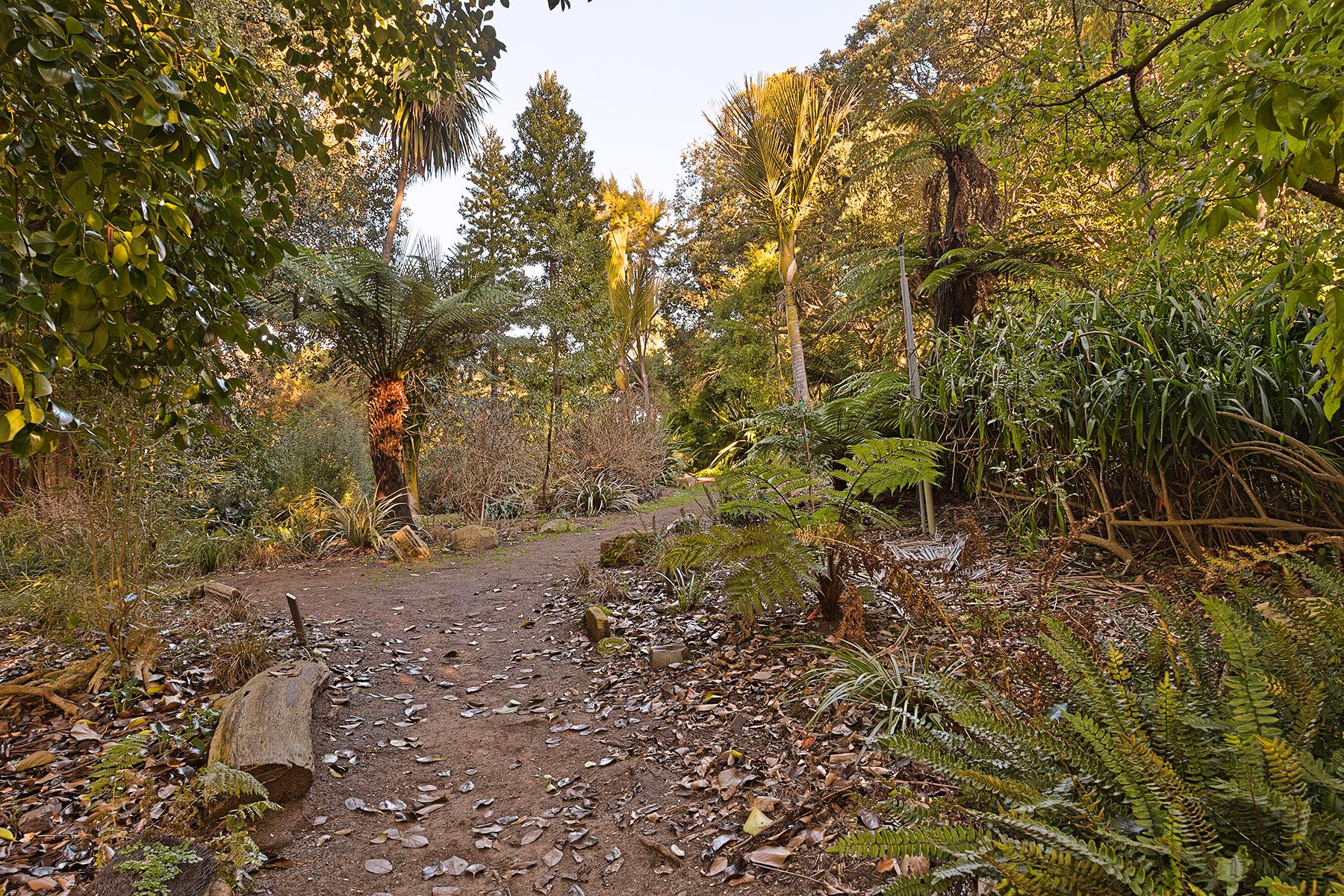 Botanical Gardens Trail - HDR, Resource, San, Red, Scene, HQ Photo