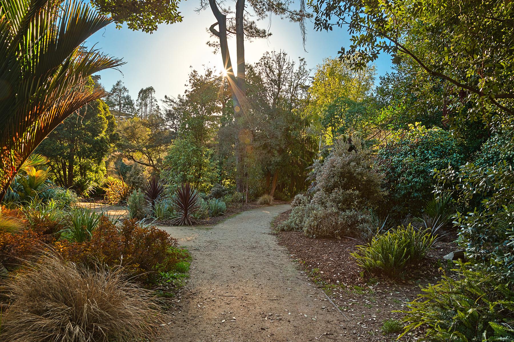 Botanical gardens trail - hdr photo