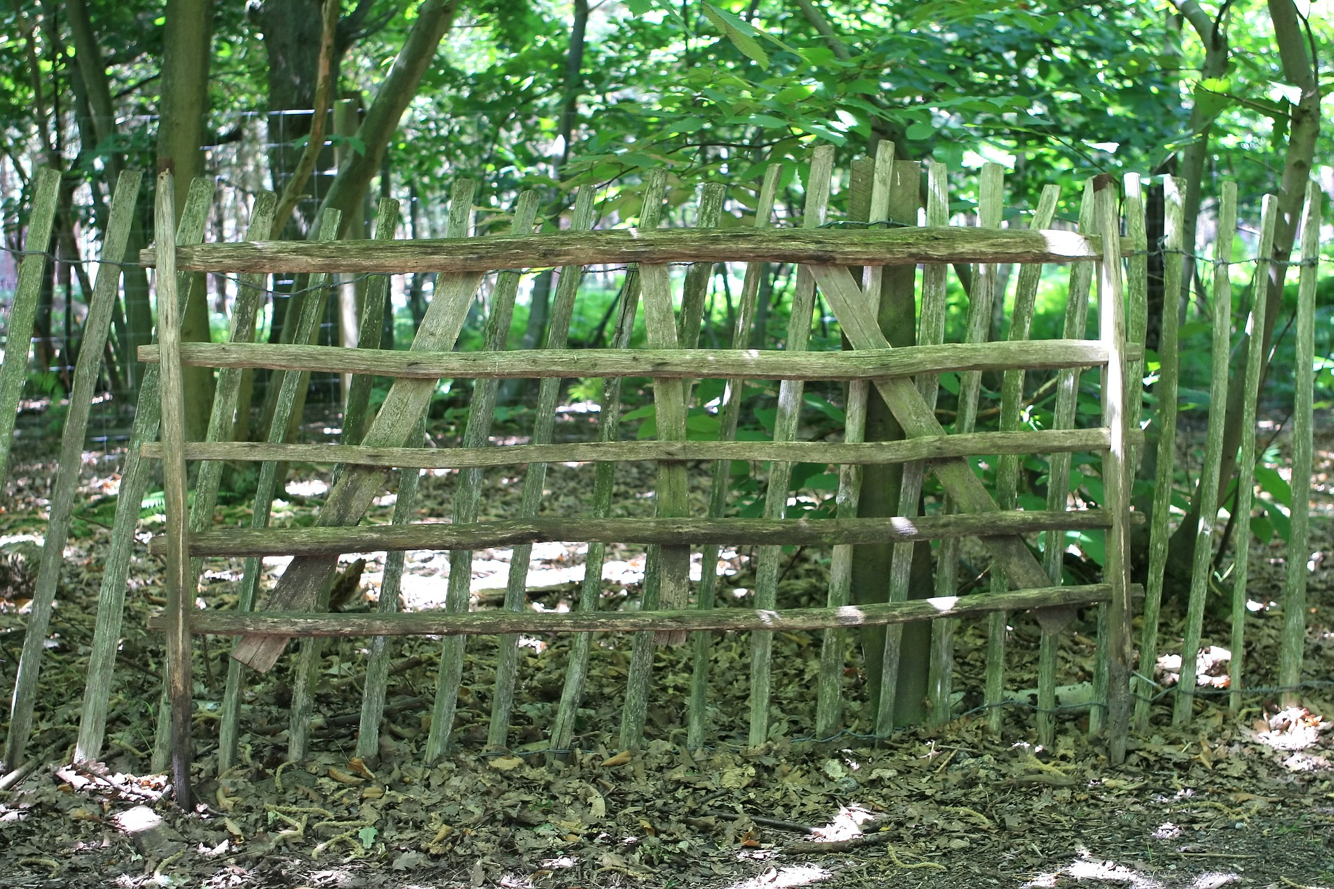Boundary, Fence, Safe, Wild, Wood, HQ Photo