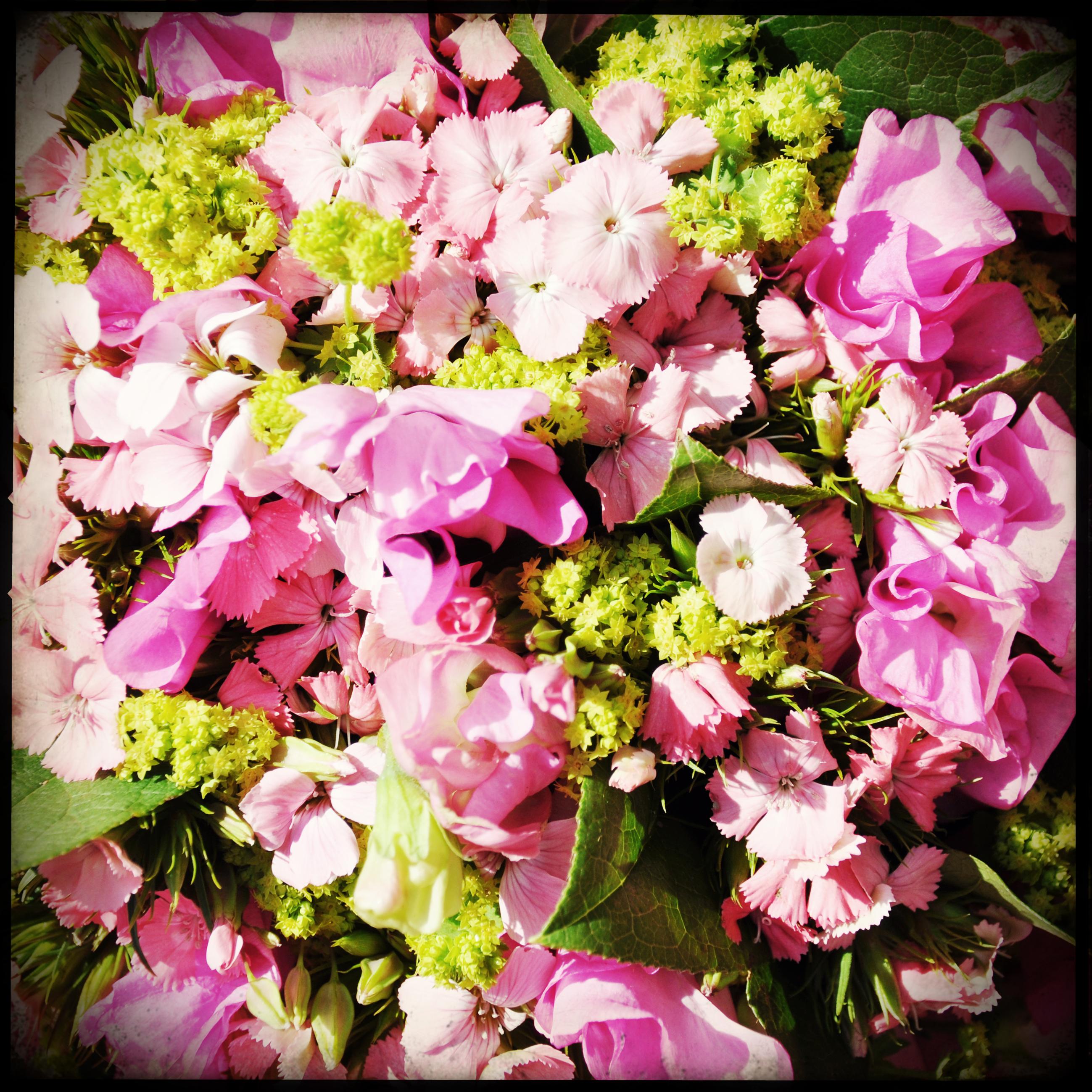Bouquet of flowers, Bouquet, Closeup, Flowers, Marriage, HQ Photo