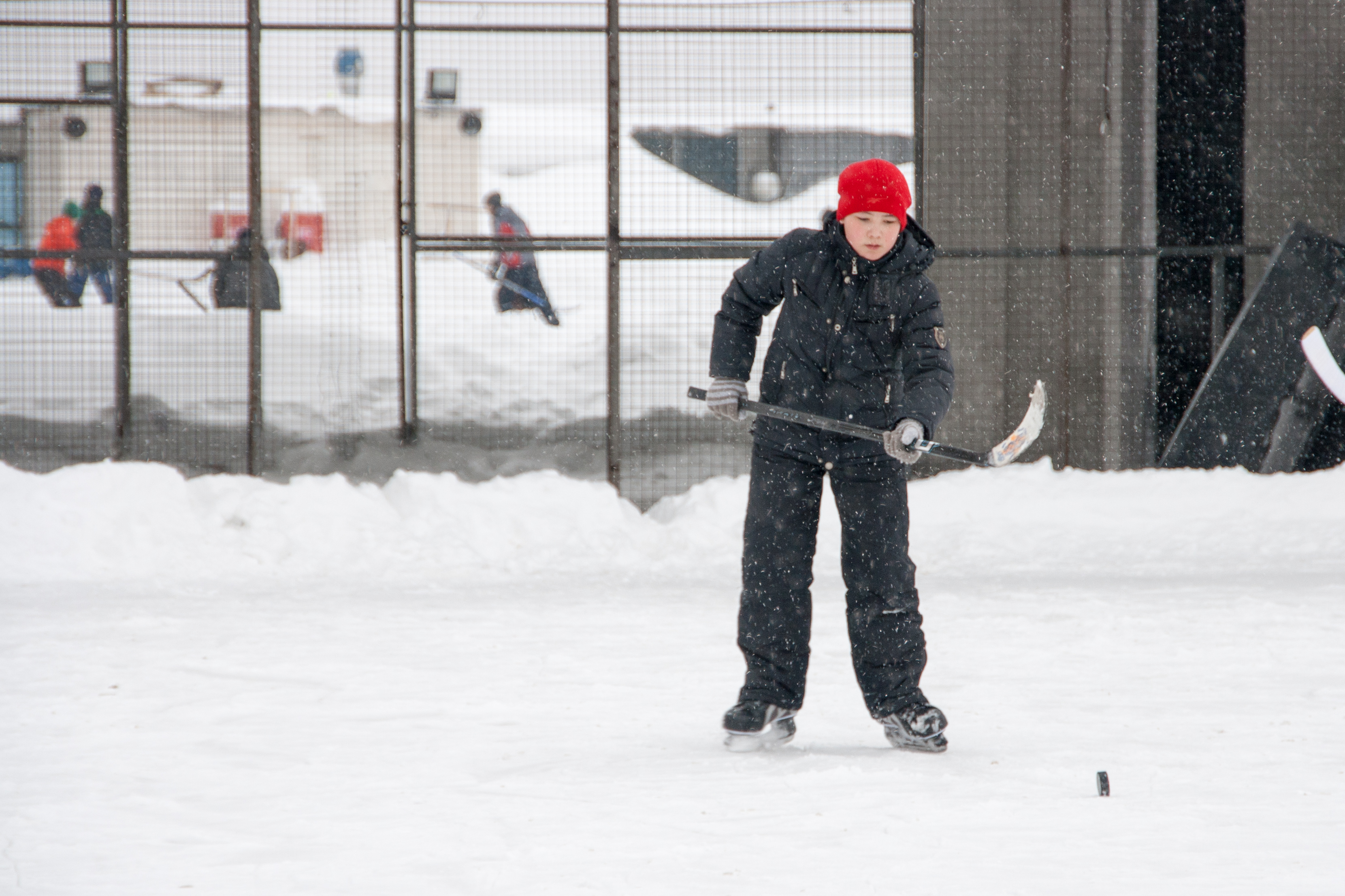 boy playing ice hockey, Active, Scrimmage, Person, Play, HQ Photo