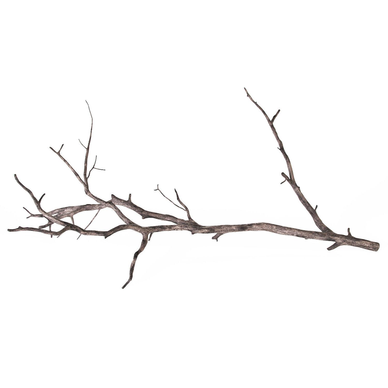 3D Branch | CGTrader