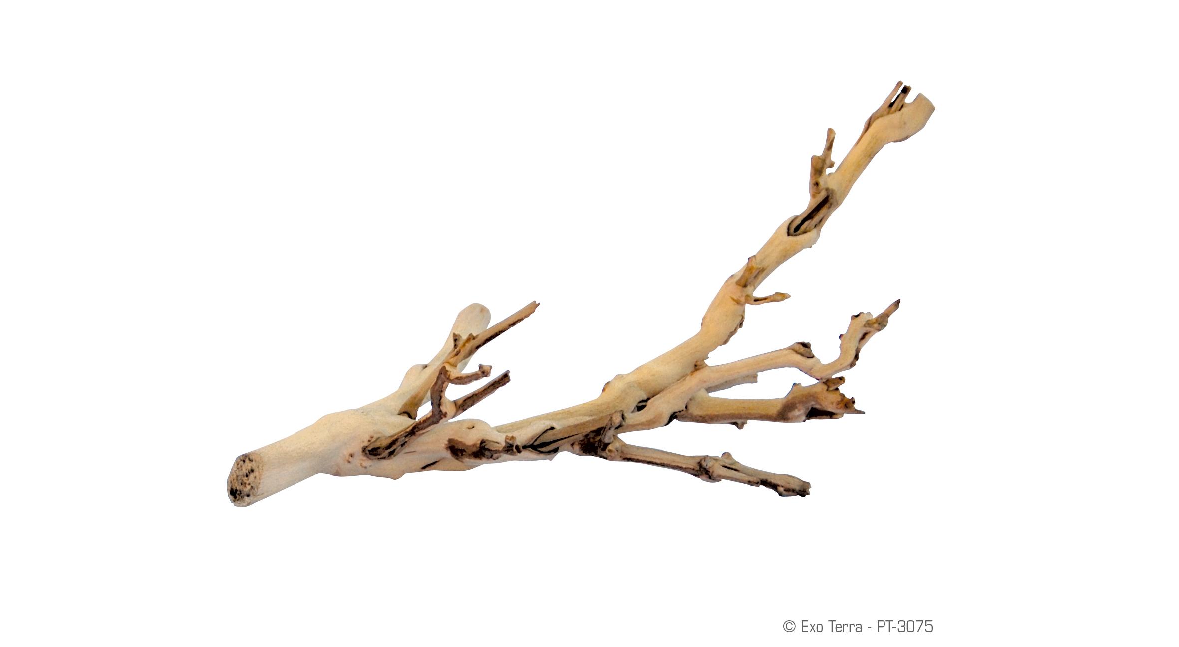 Exo Terra : Forest Branch / Sandblasted Grape Vine