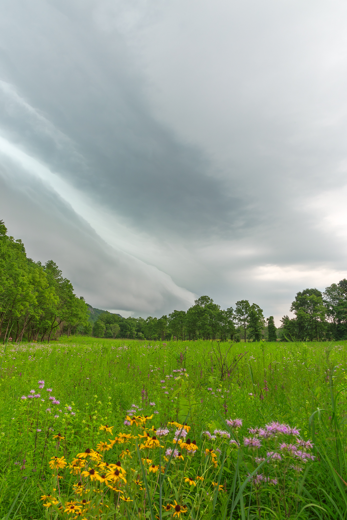 Brewing summer storm - hdr photo