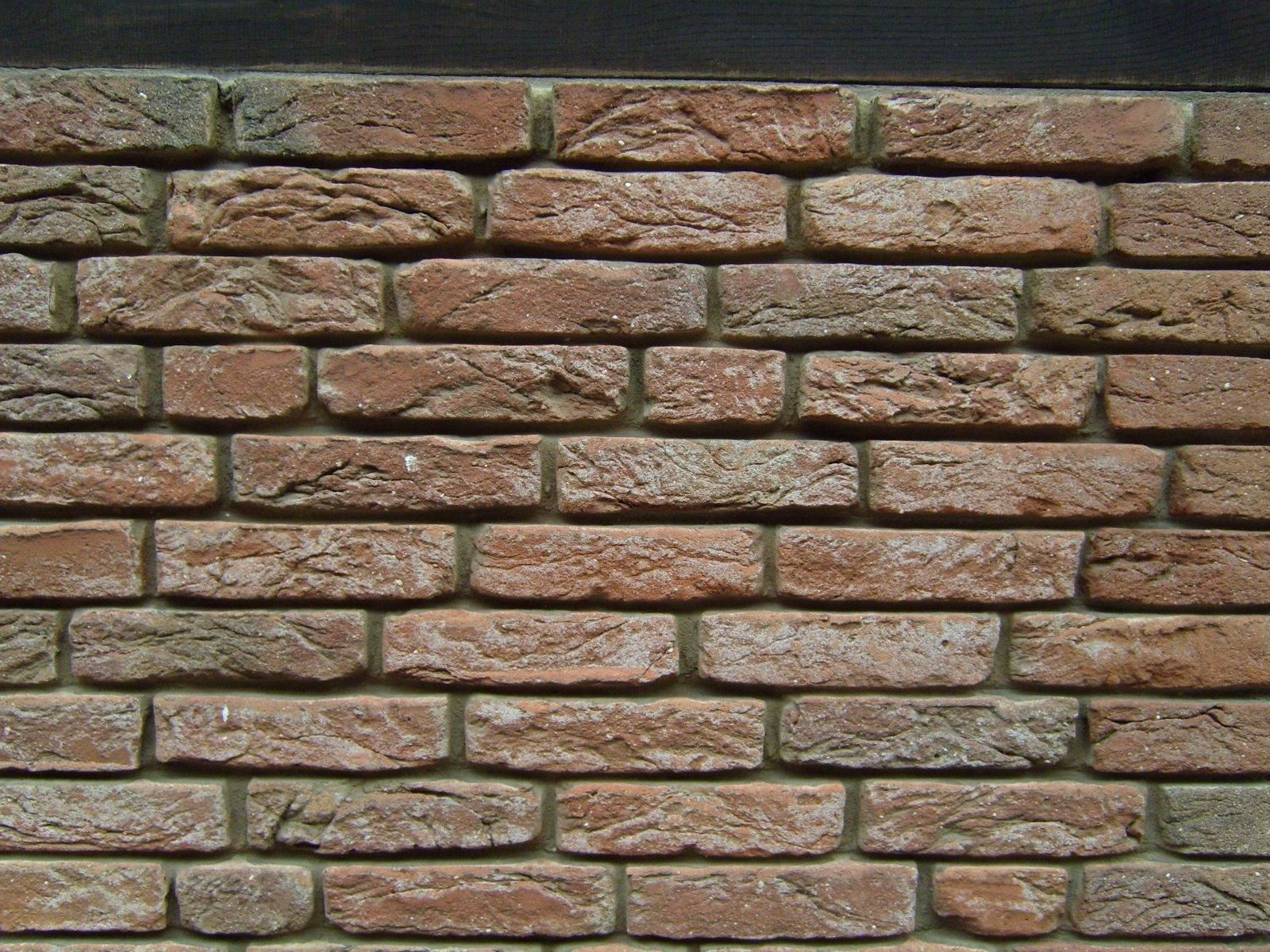 Free picture: red, brick, texture, wall