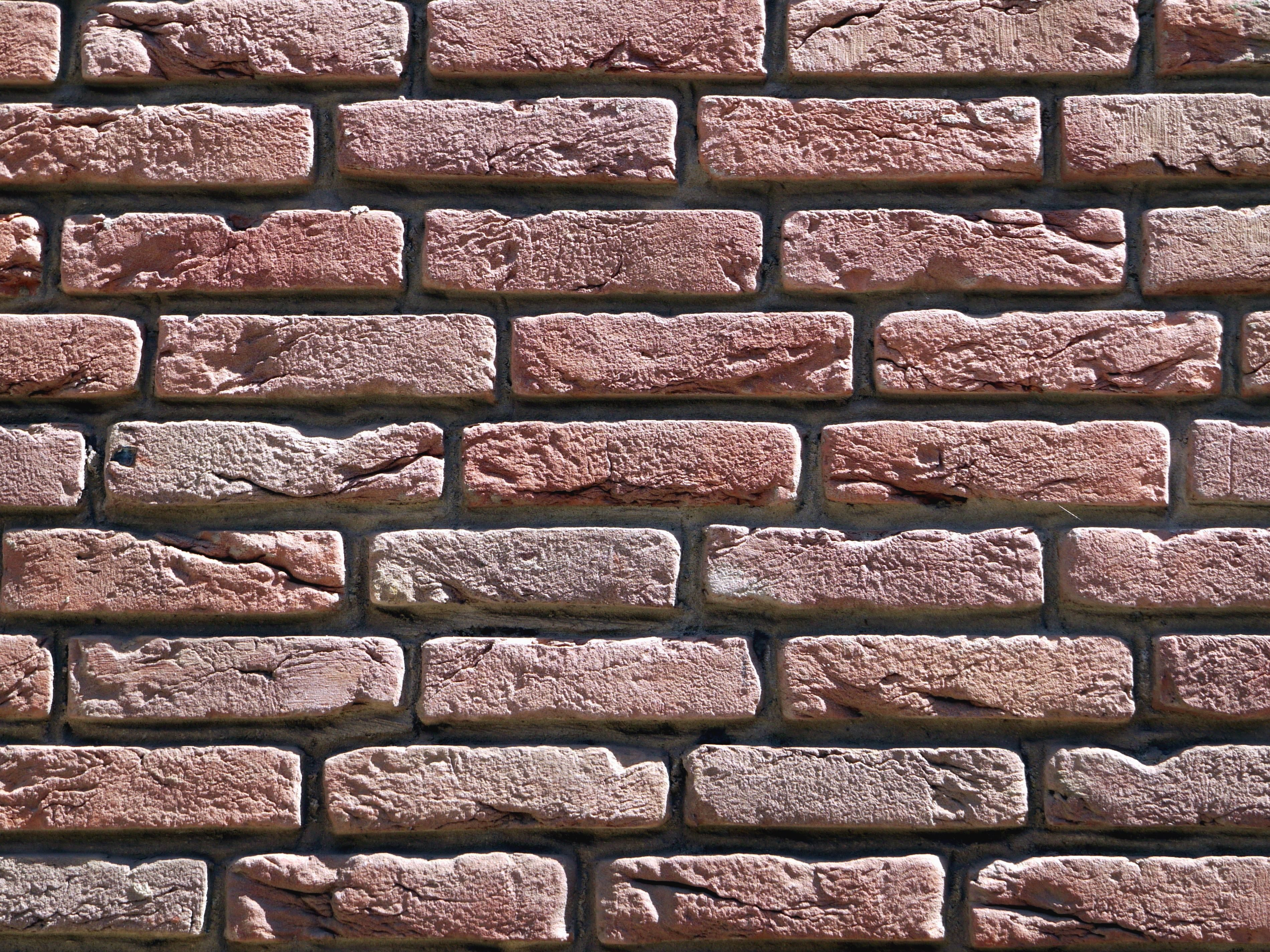 Free picture: wall, brick, texture, red, white