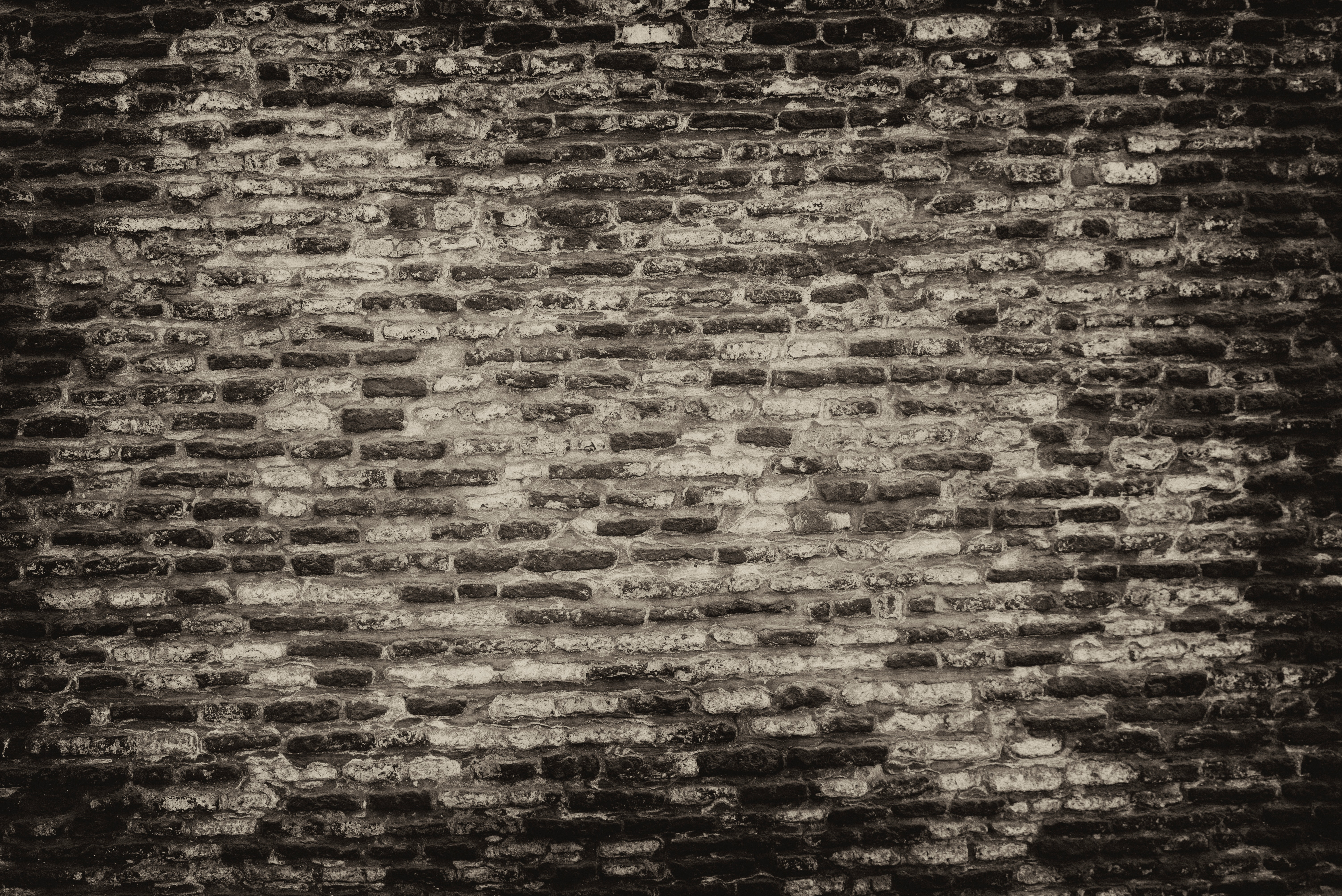 1000+ Interesting Brick Wall Photos · Pexels · Free Stock Photos
